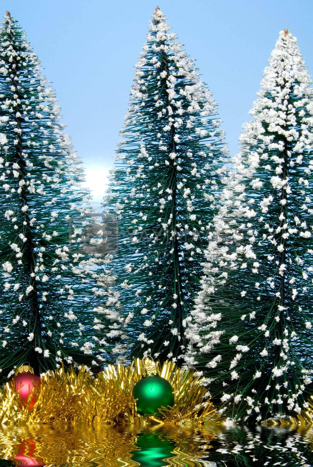 Christmas trees covered in snow by a lake..