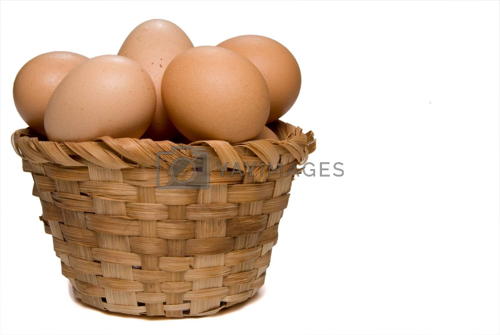 Never put all of your eggs in one basket.
