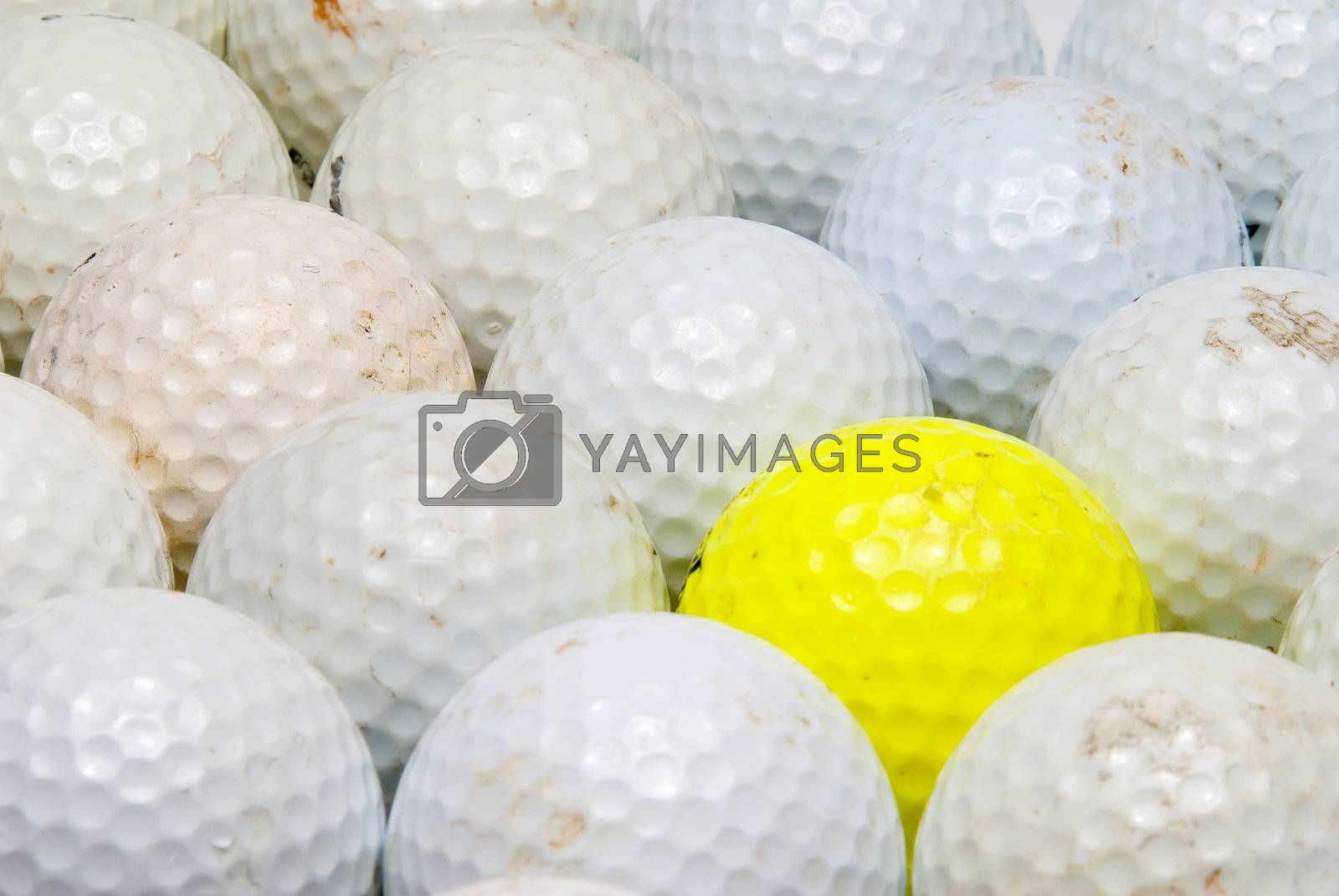 A yellow golf ball in the middle of white balls.