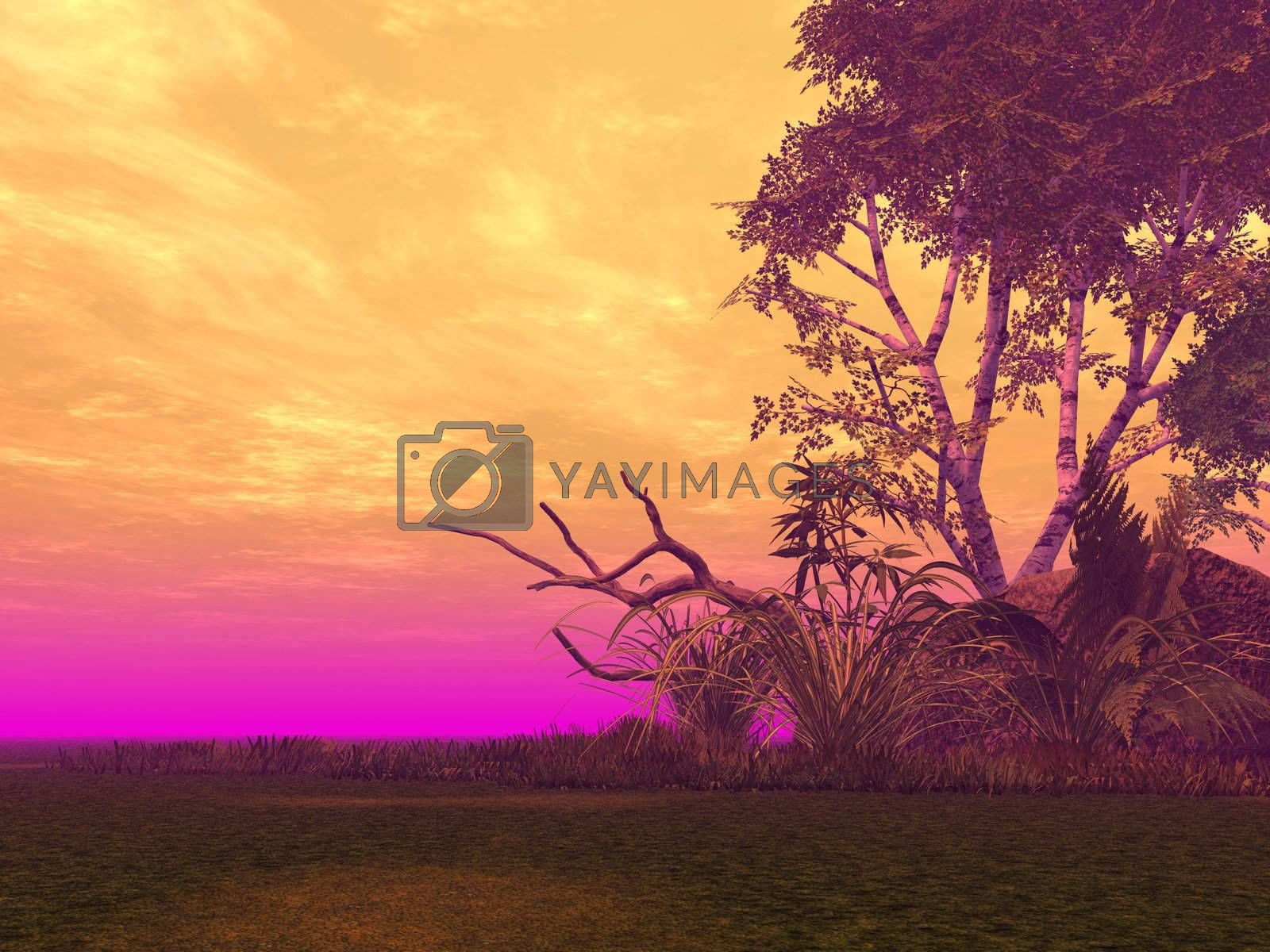Royalty free image of colors by drizzd