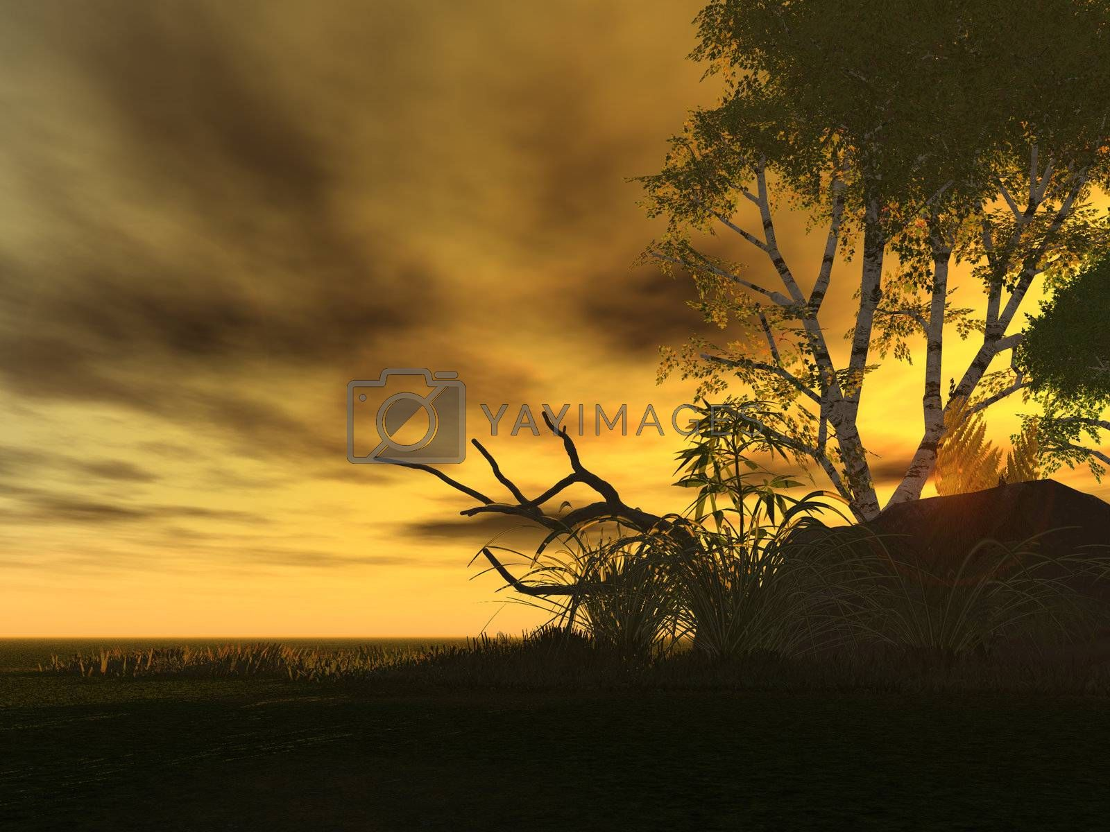 Royalty free image of sunrise by drizzd