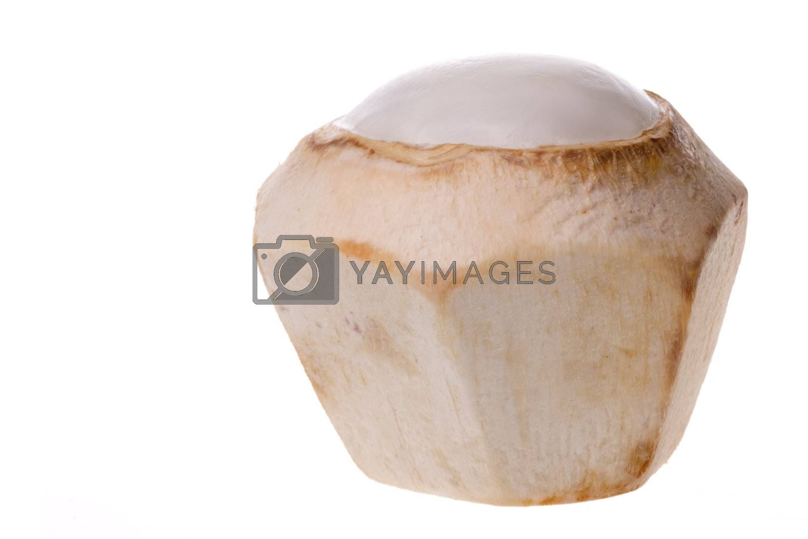 Royalty free image of Fresh Coconut Isolated by shariffc