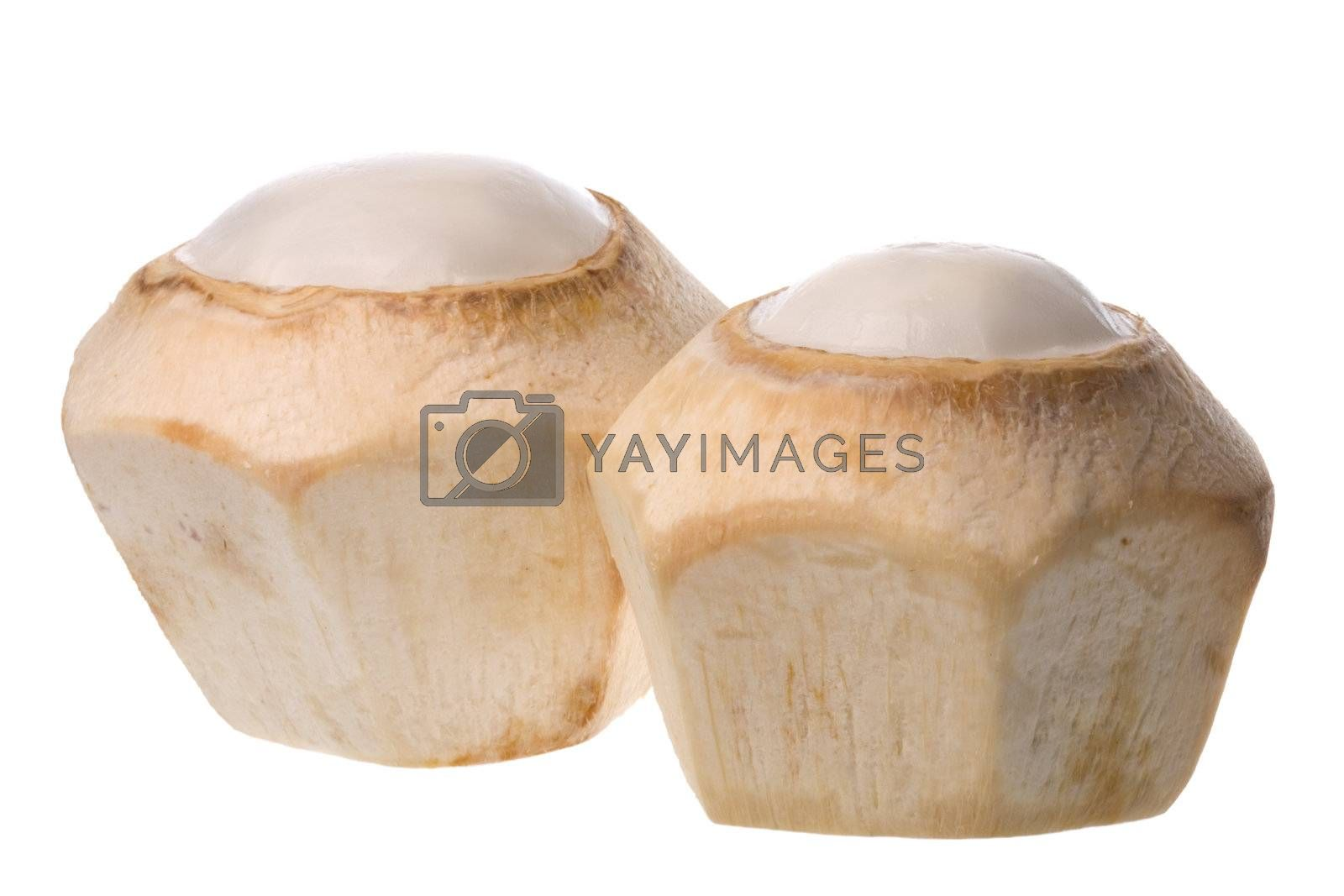 Royalty free image of Fresh Coconuts Isolated by shariffc