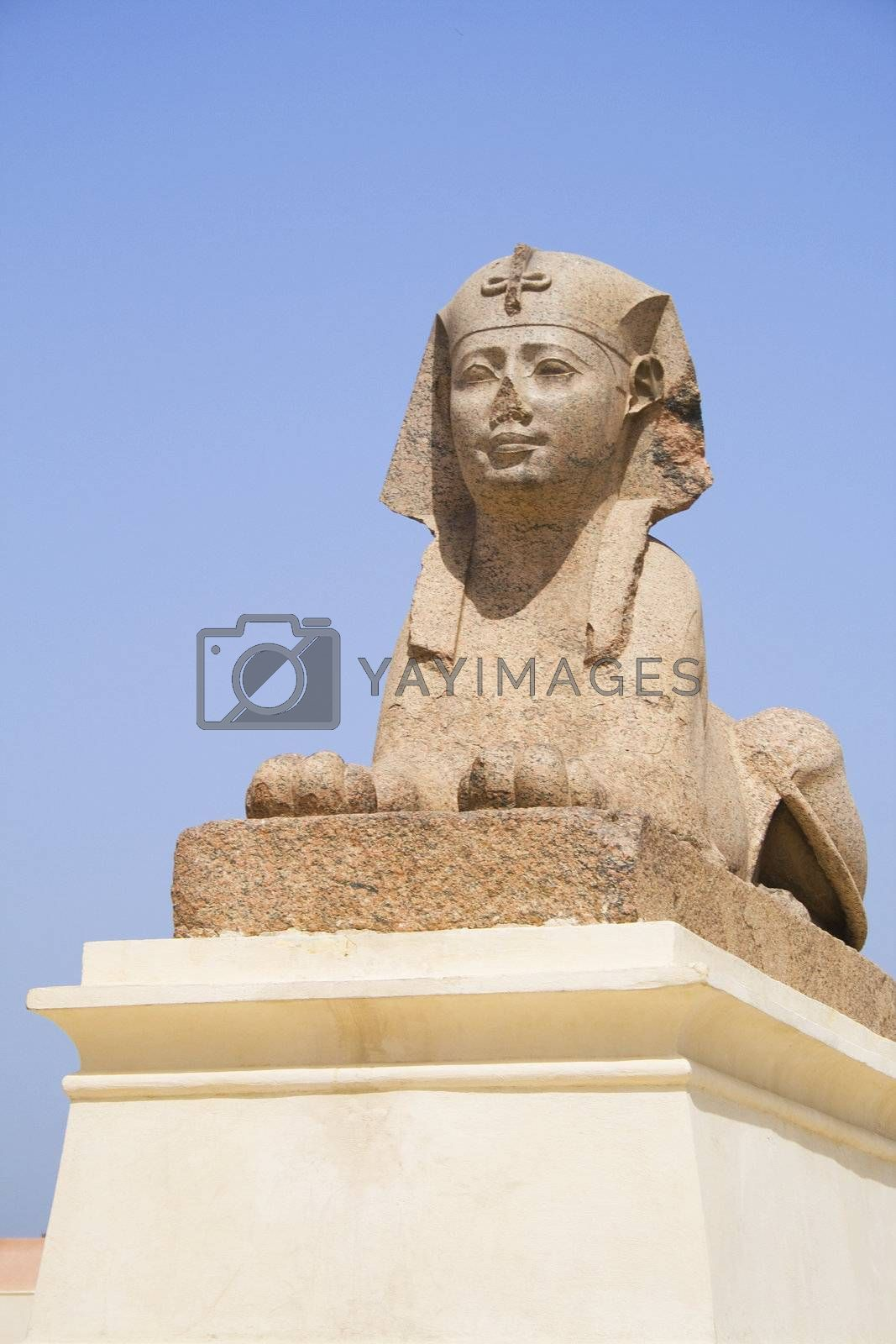 Royalty free image of Ptolemaic Sphinx at Pompey's Pillar, Egypt by shariffc