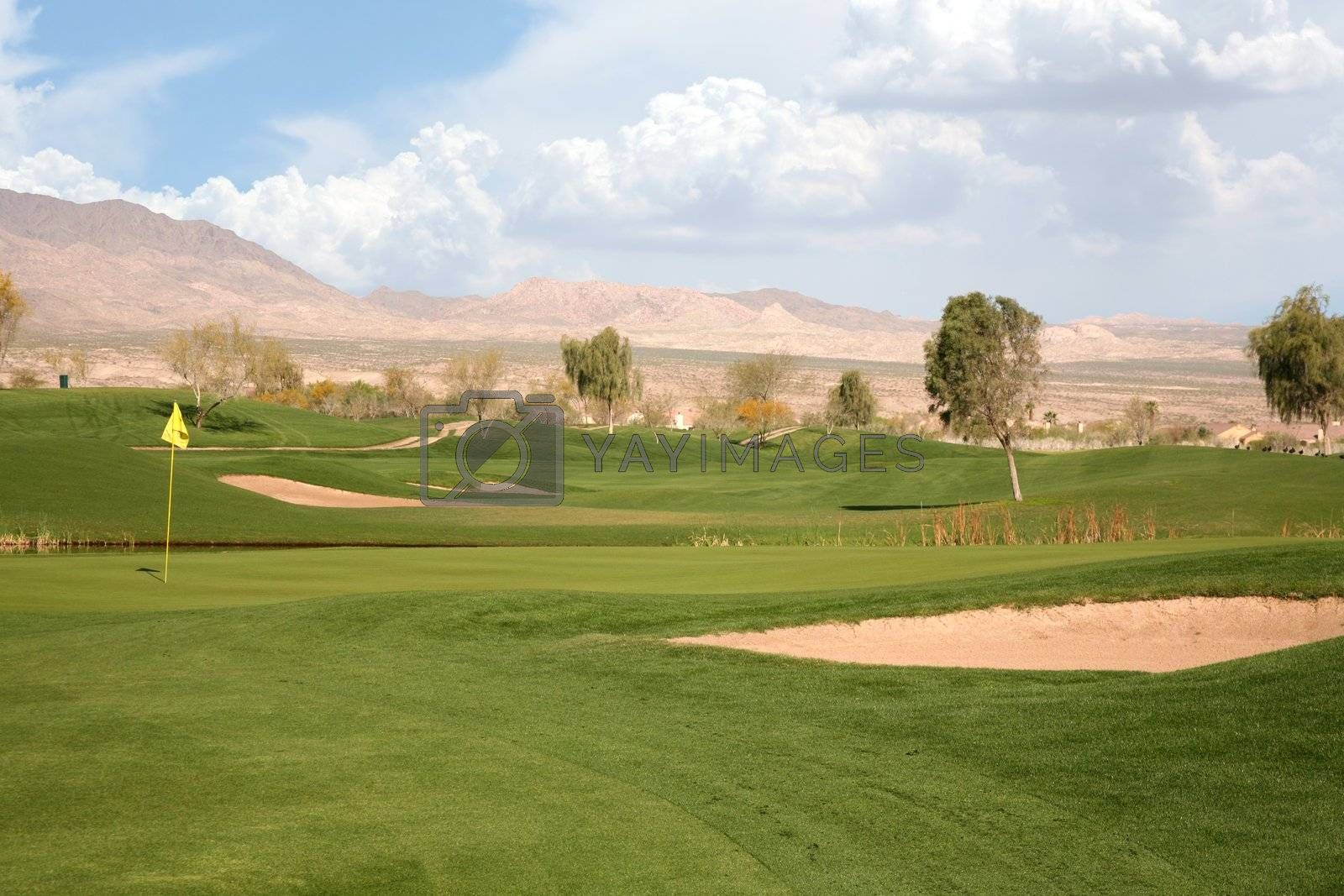 Royalty free image of Golf course 2 by scrappinstacy
