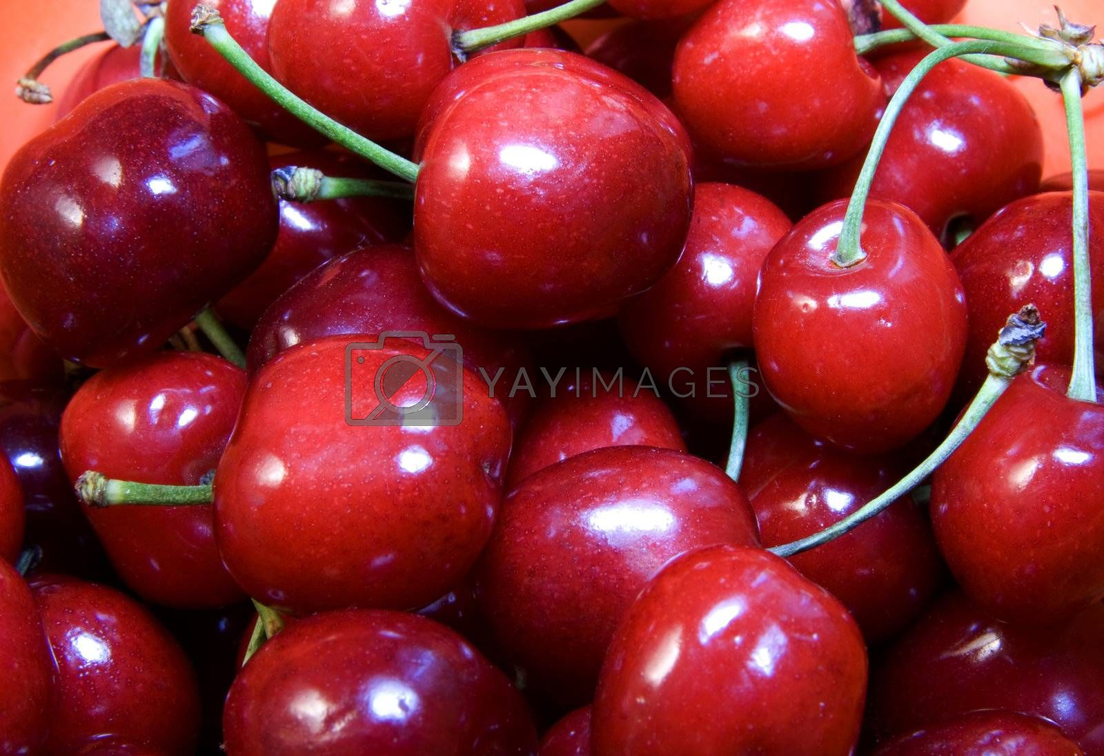 Royalty free image of Cherries by Koufax73