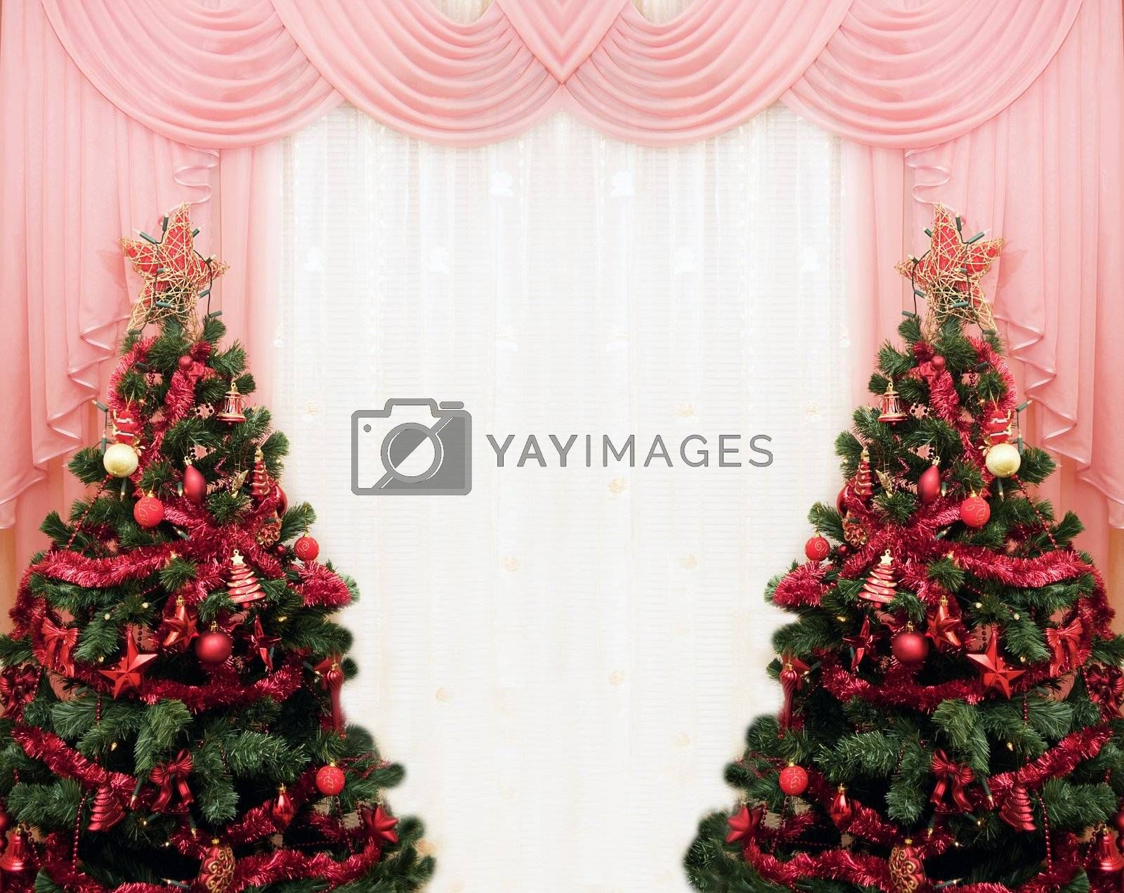 Royalty free image of Two Christmas tree and curtains by Angel_a