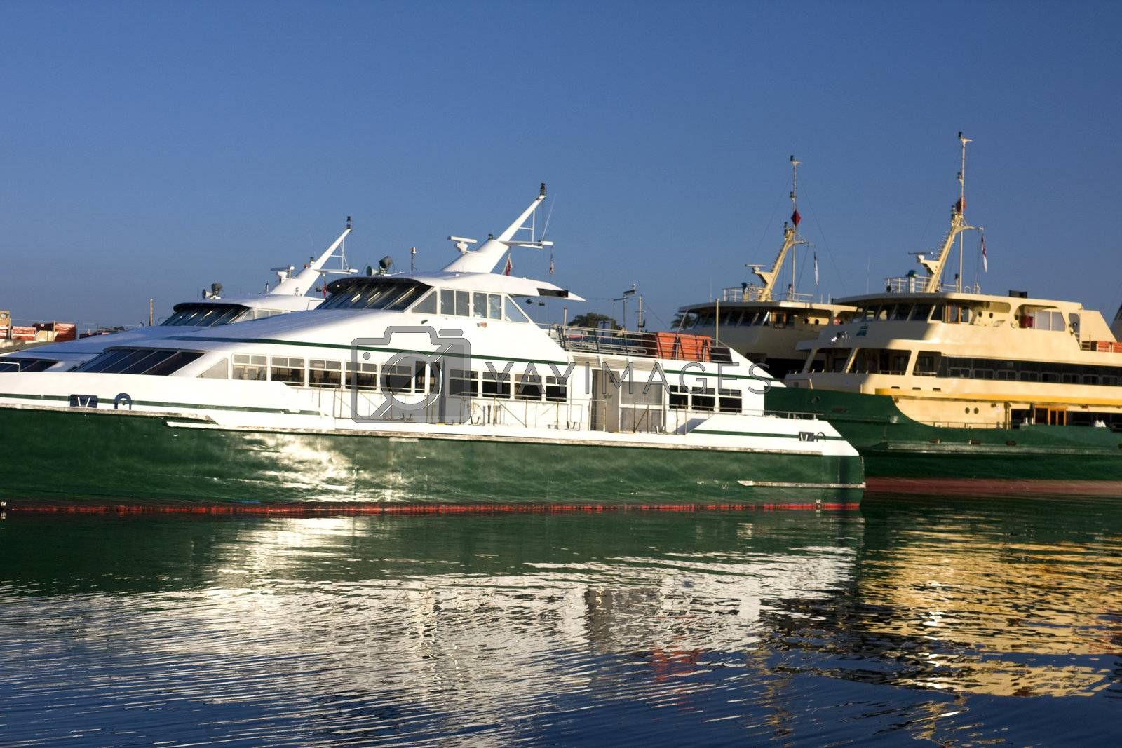 Royalty free image of Ferries at Mort Bay, Sydney by shariffc