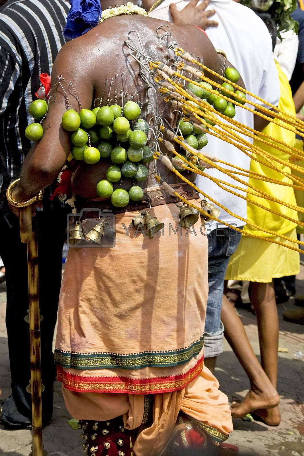 Royalty free image of Hindu Devotee at Thaipusam Celebration by shariffc