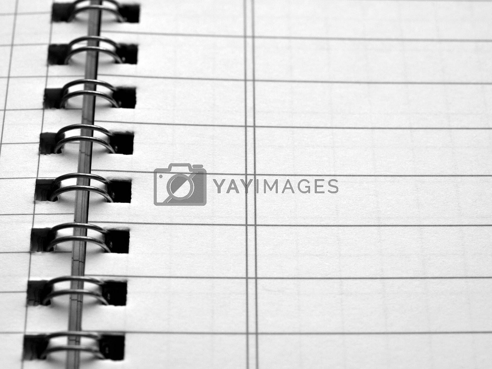 Royalty free image of Blank notebook page by claudiodivizia