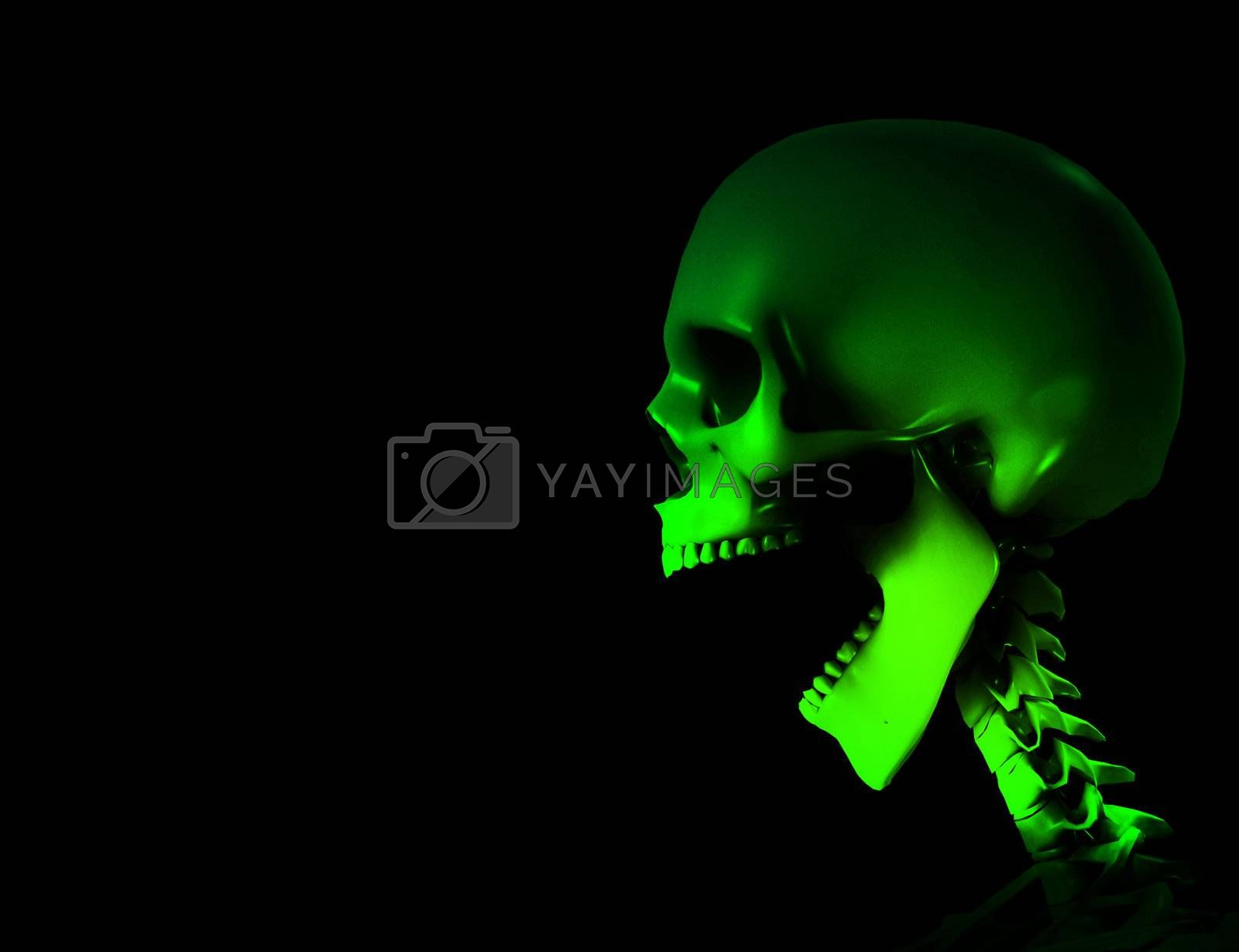 Royalty free image of Shouting Skeleton by harveysart