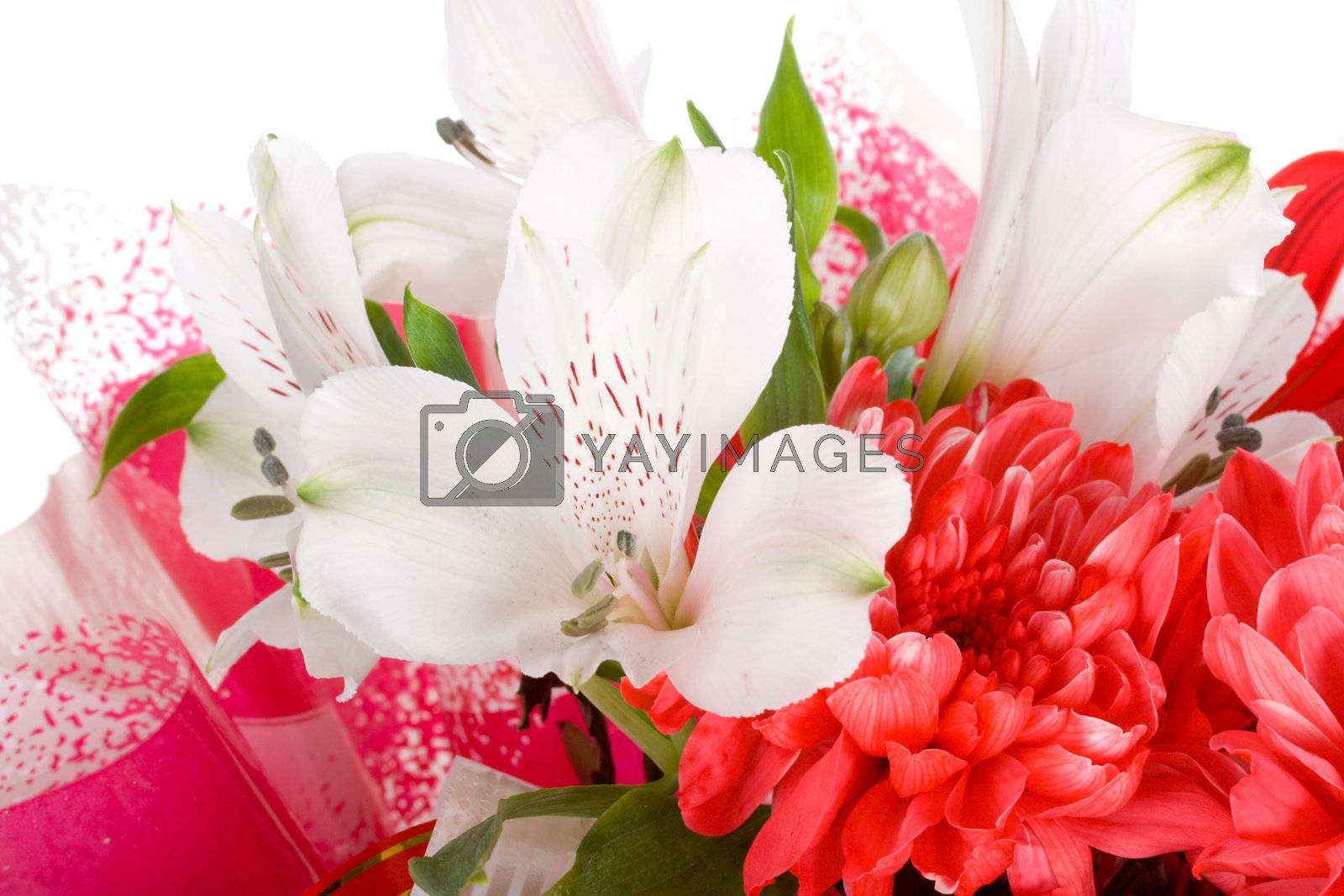 Royalty free image of close-up wedding bouquet isolated by Alekcey