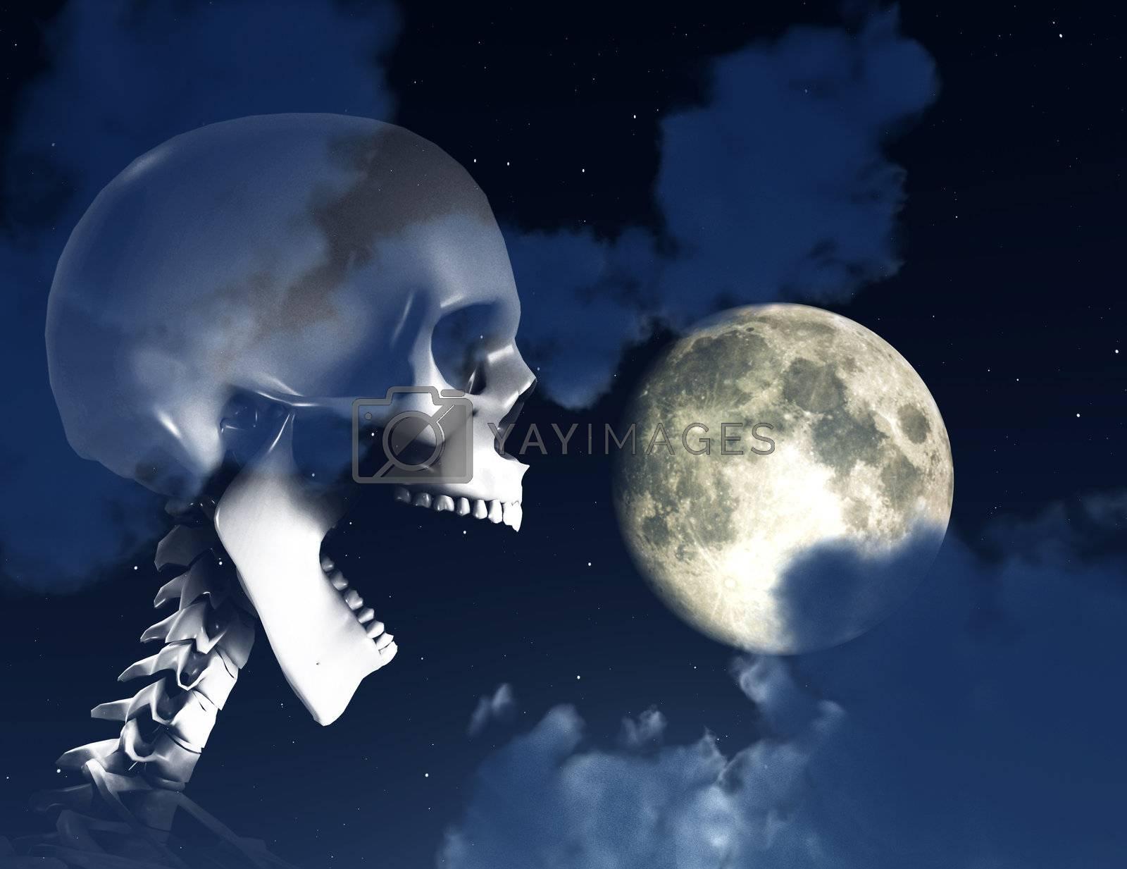 Royalty free image of Shouting Skeleton And Nighttime Sky by harveysart