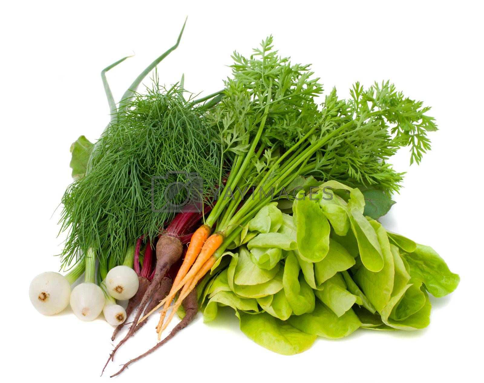 Royalty free image of heap of new vegetables by Alekcey