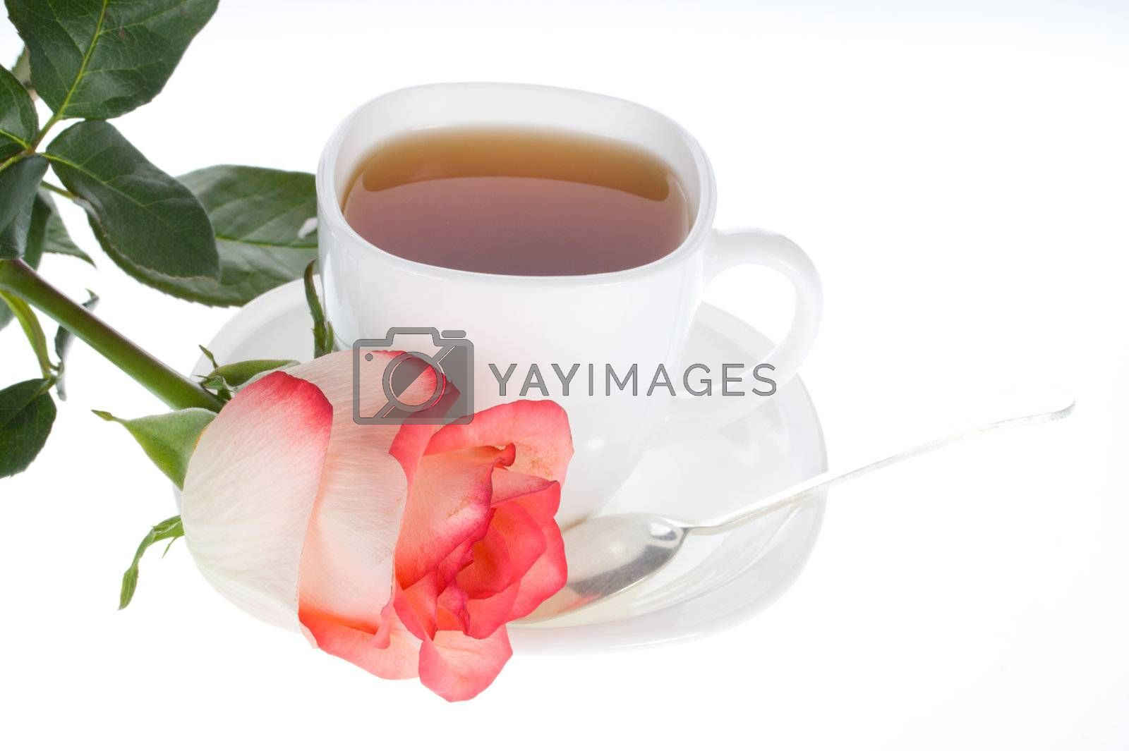 close-up rose and cup of tea, isolated on white