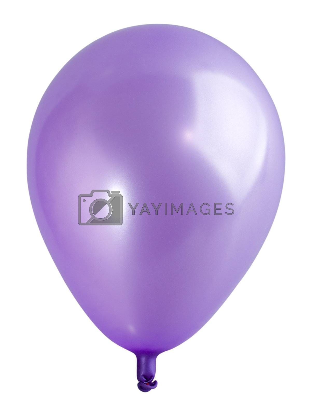 swollen violet balloon, isolated on white