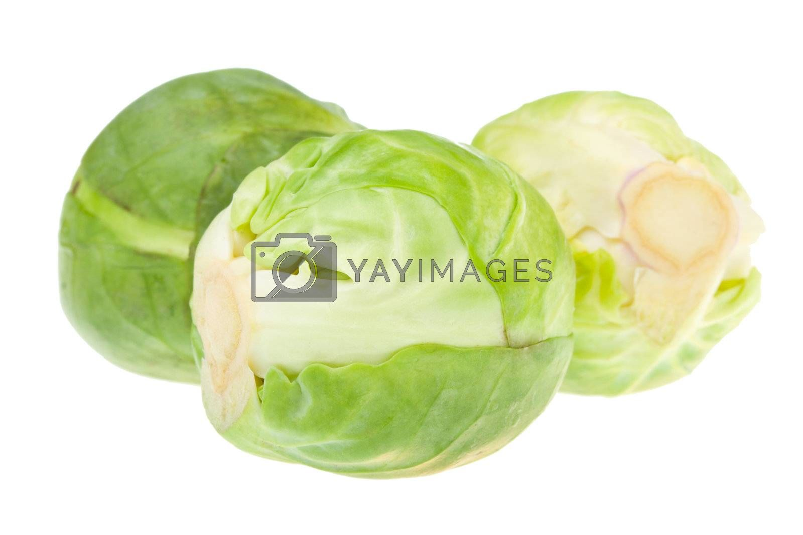 three brussels sprouts, isolated on white