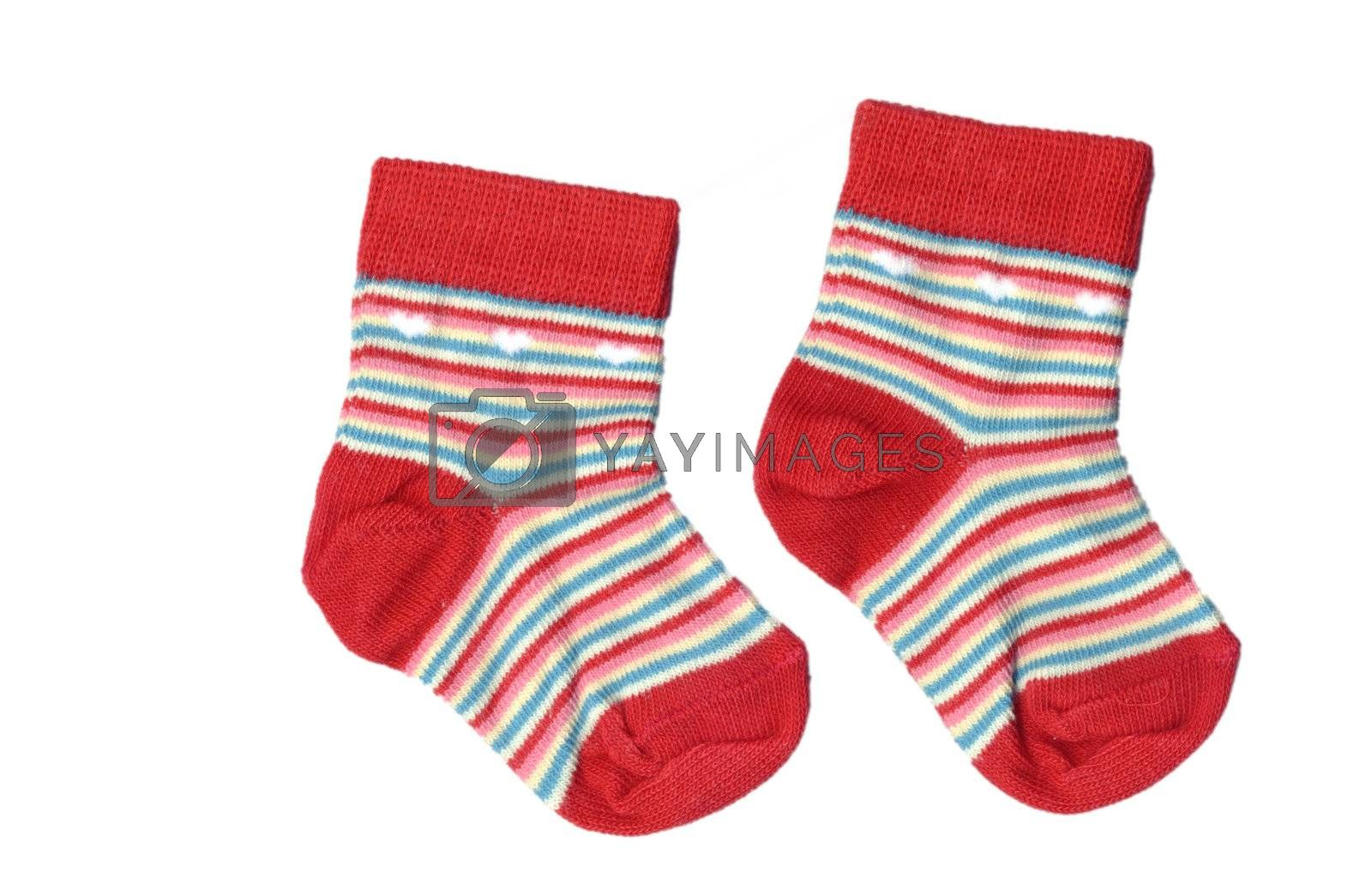 toddlers socks isolated by leafy