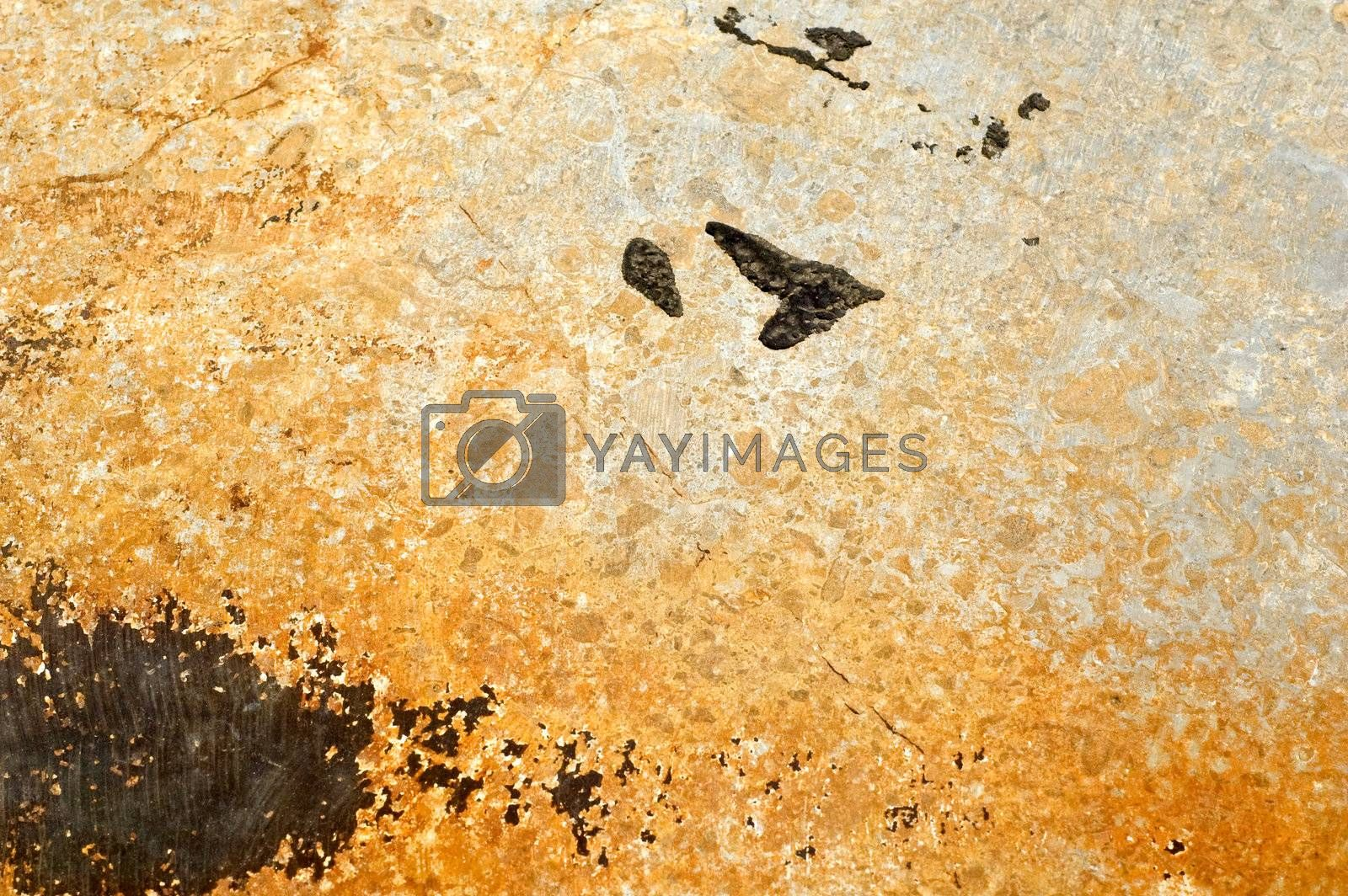 Grunge wall texture with black stains