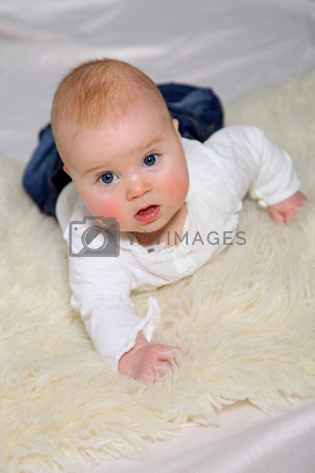 a baby with blue eyes on the belly and looks up into the direction of the camera
