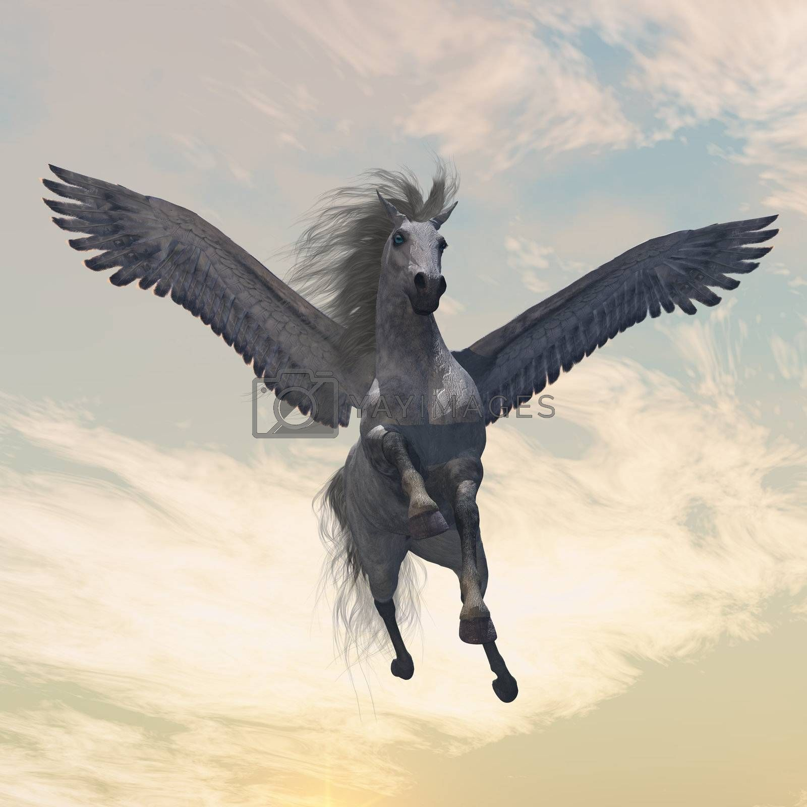 The fabled creature of myth and legend, the white Pegasus, flies with beautiful wings.