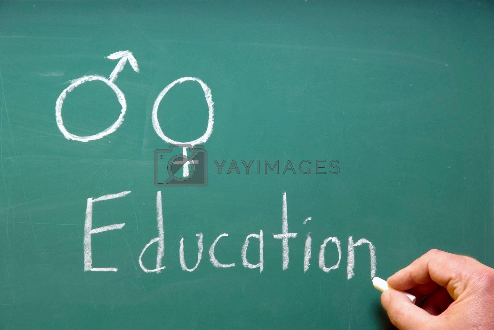 A chalkboard represention sex education in school.
