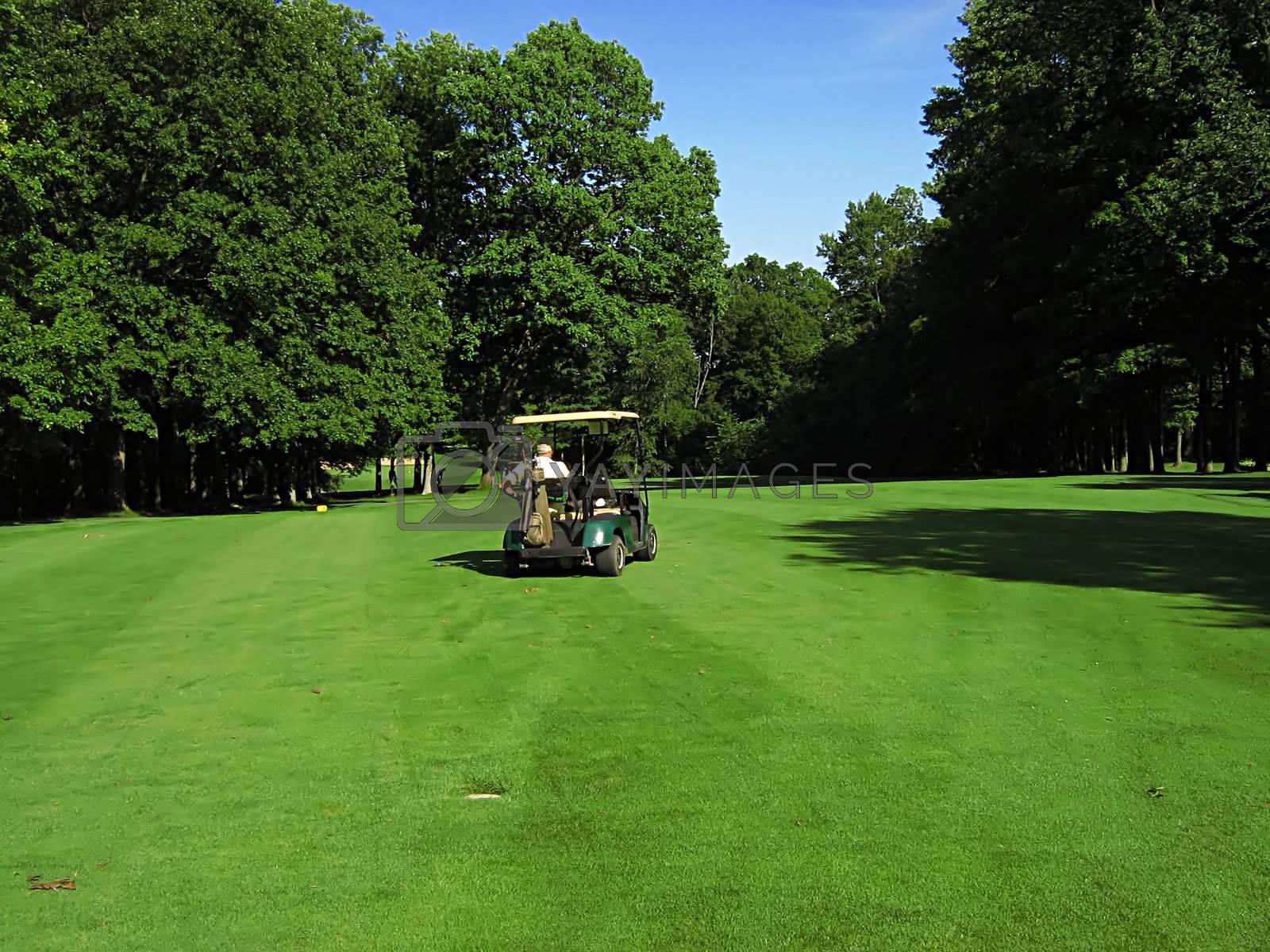 A photograph of a golf cart on a golf course.