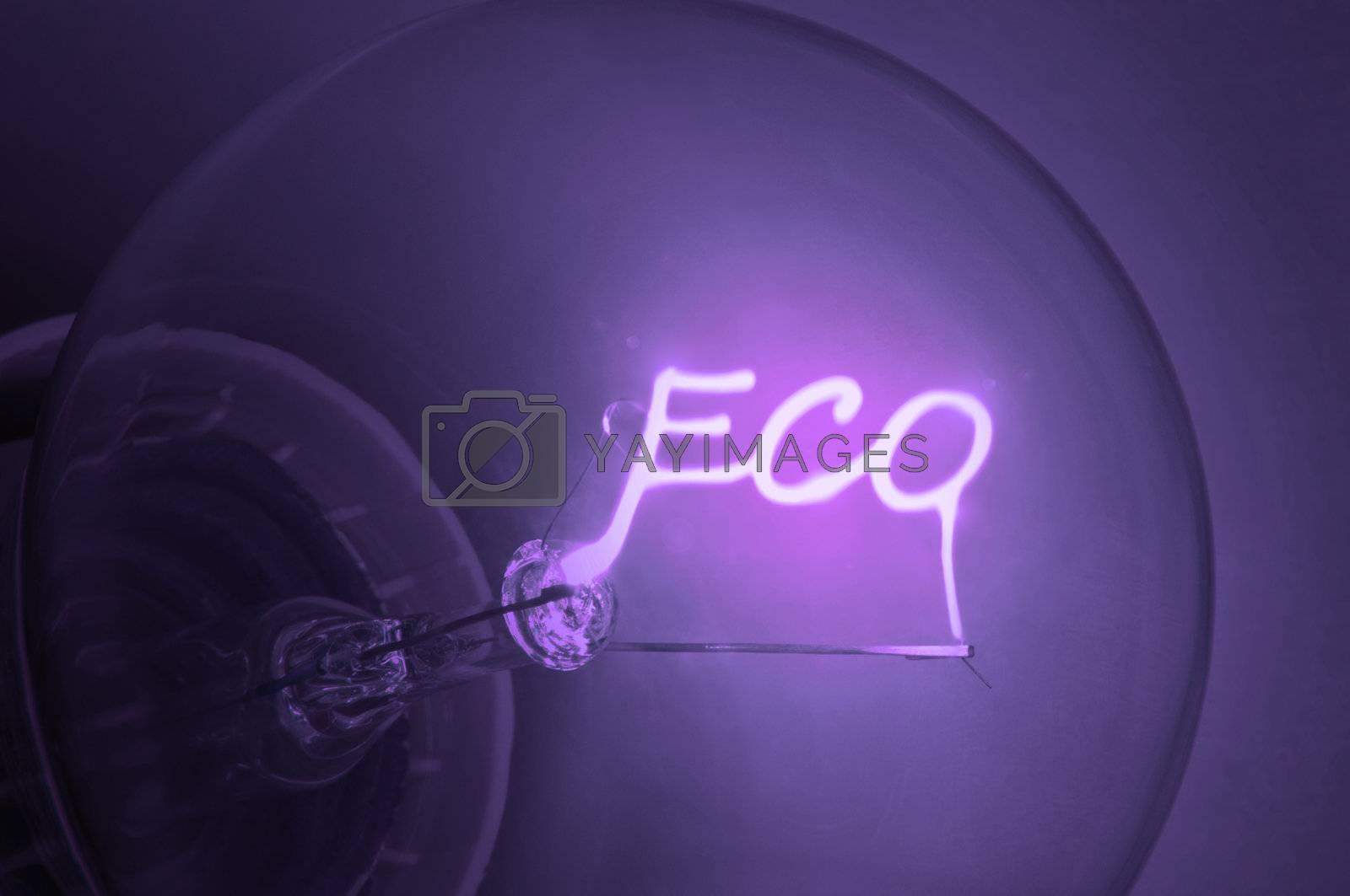 "Close up on illuminated purple light bulb filament spelling the word ""Eco""."
