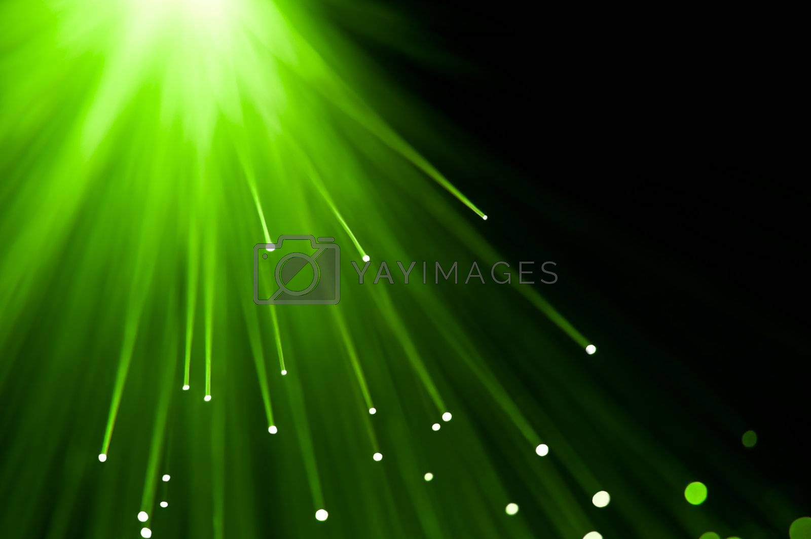 Abstract green fibre optic lights against a black background.