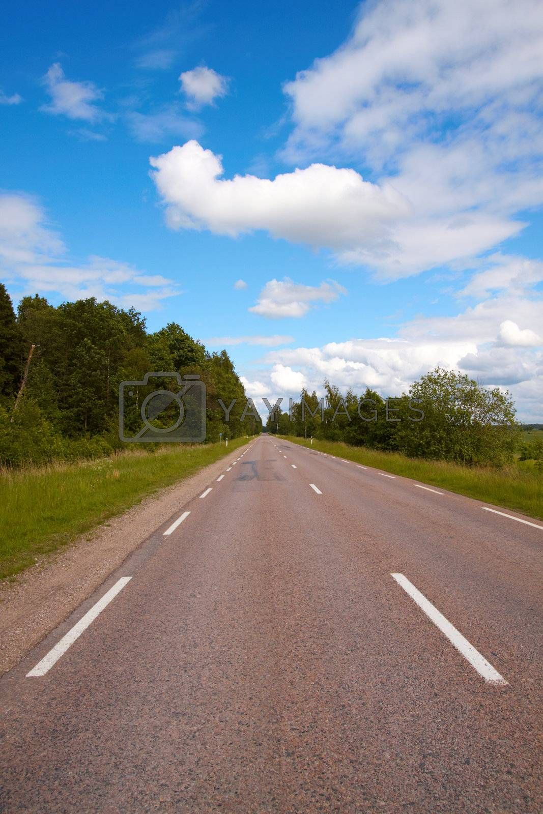 Road, freeway seemingly disappearing into the horizon. Sunny summer day. Transportation, travel concept