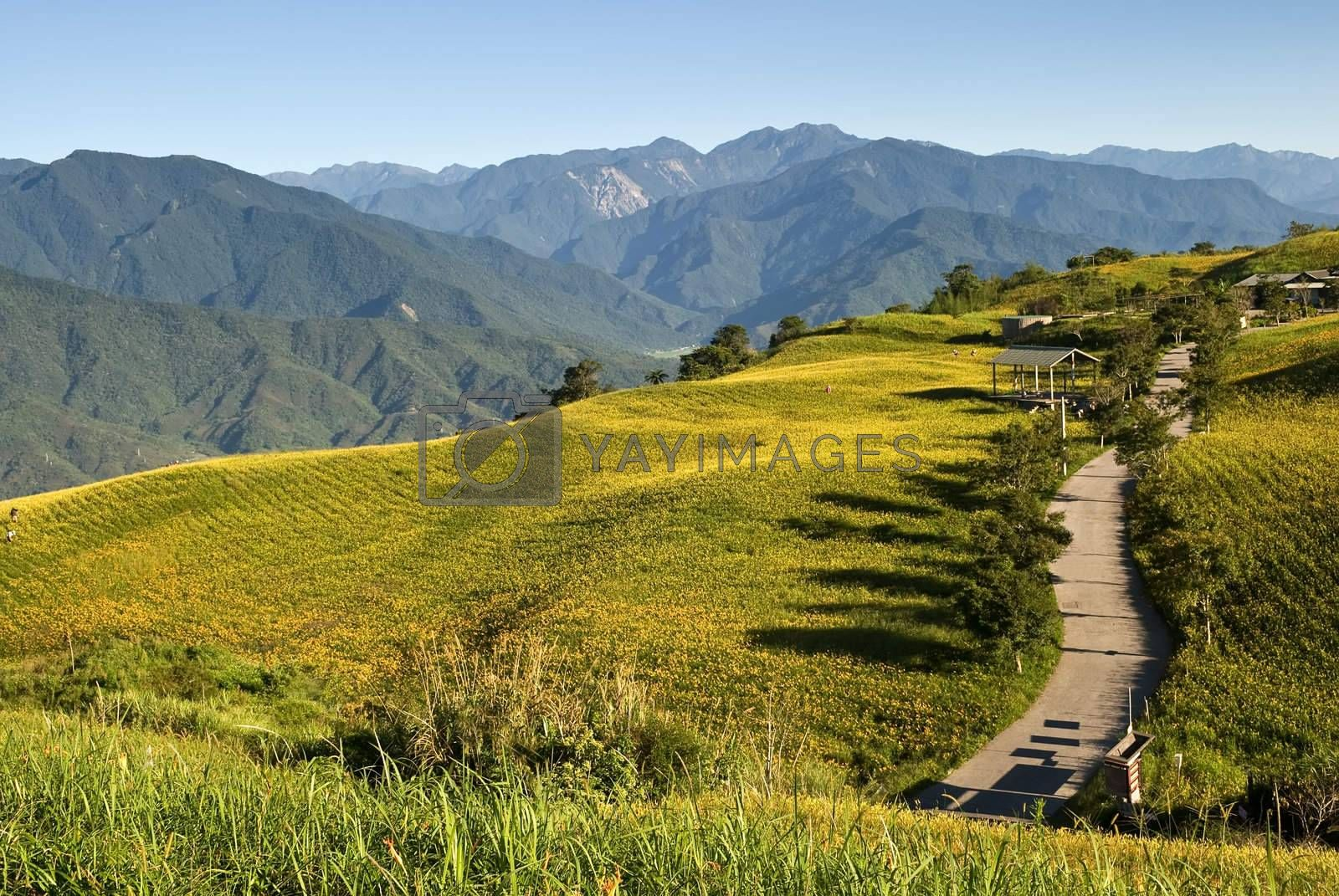 Landscape of buildings and road in mountain under blue sky.