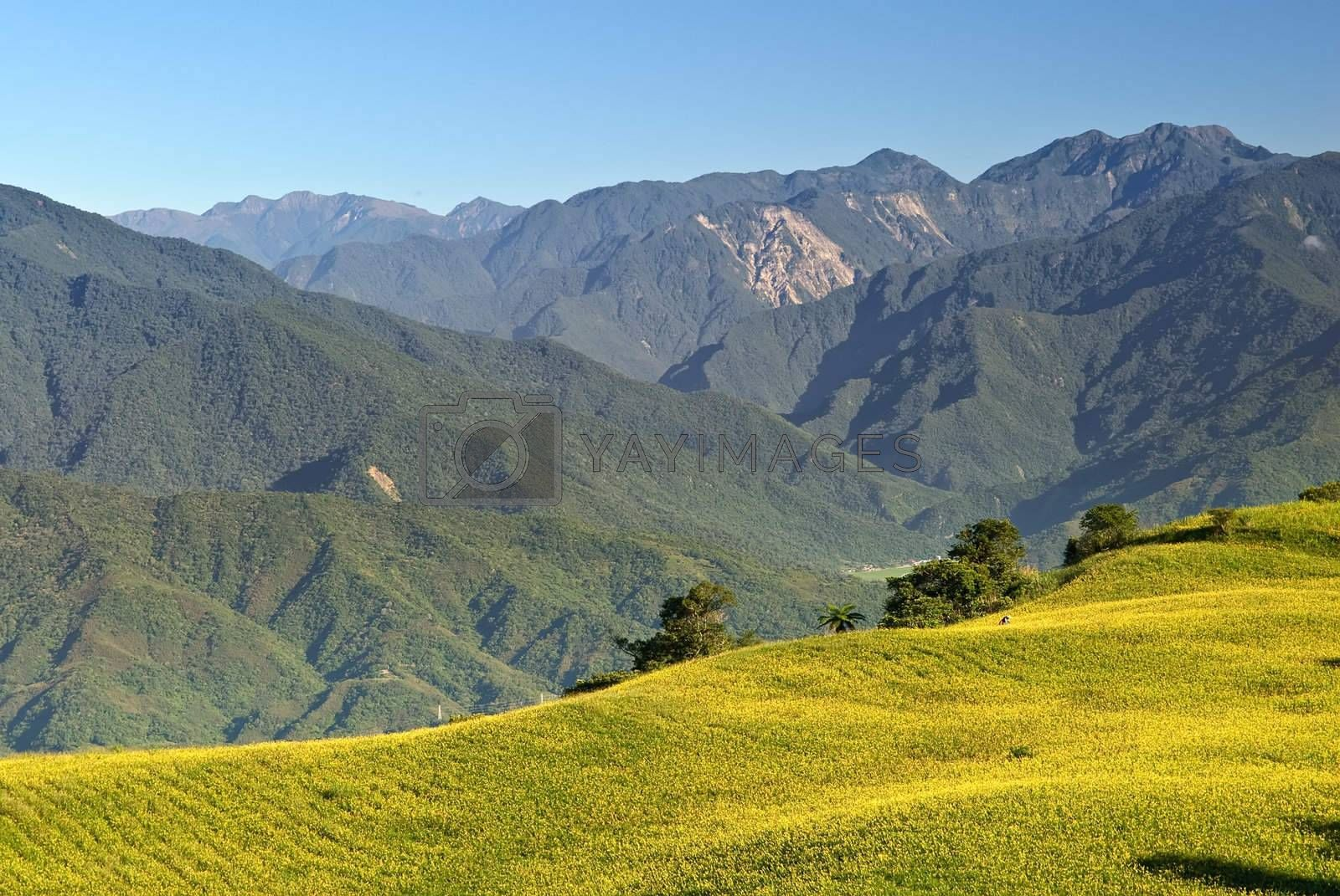 Mountain scenery with golden hill under blue sky.