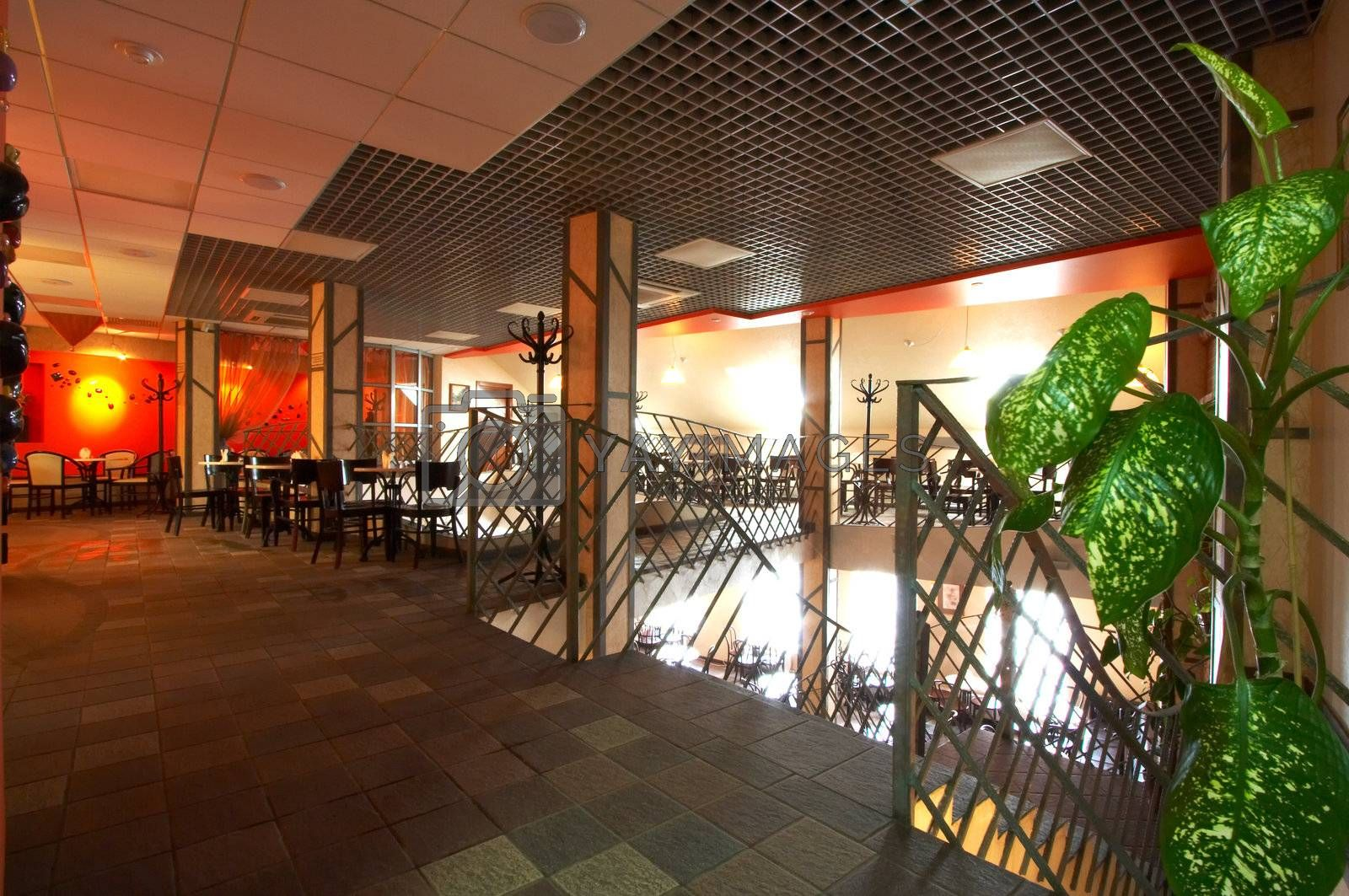 Beautiful modern cafe with an ornamental plant