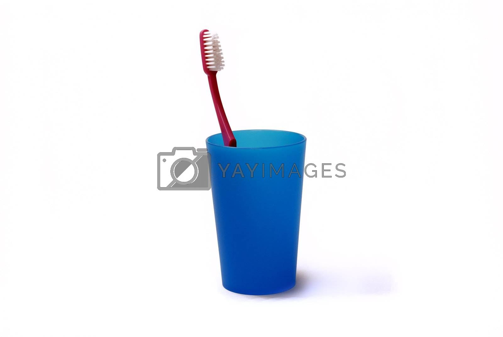 Toothbrush in a color holder