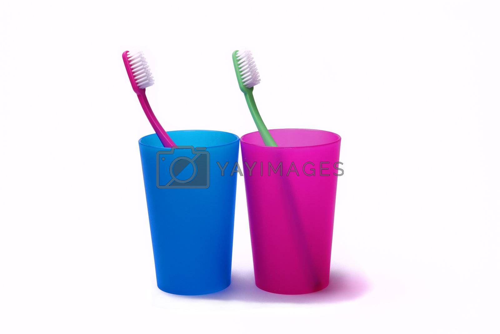 Toothbrushes in color holders