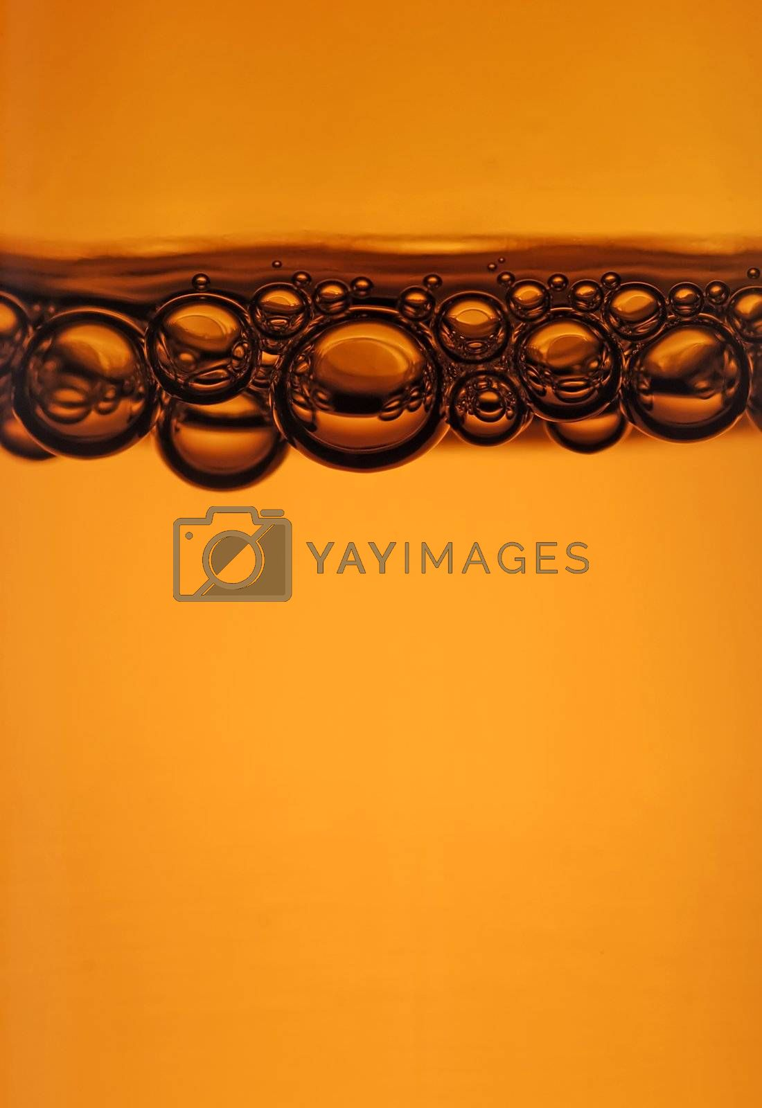 close up of bubbles at the top of a beer bottle