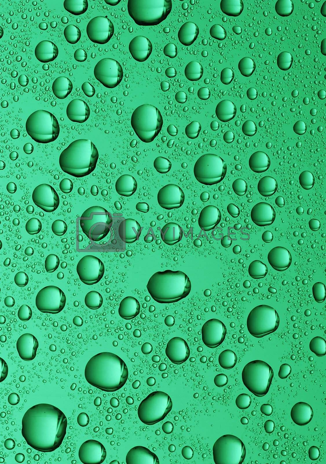 large water drops by massman
