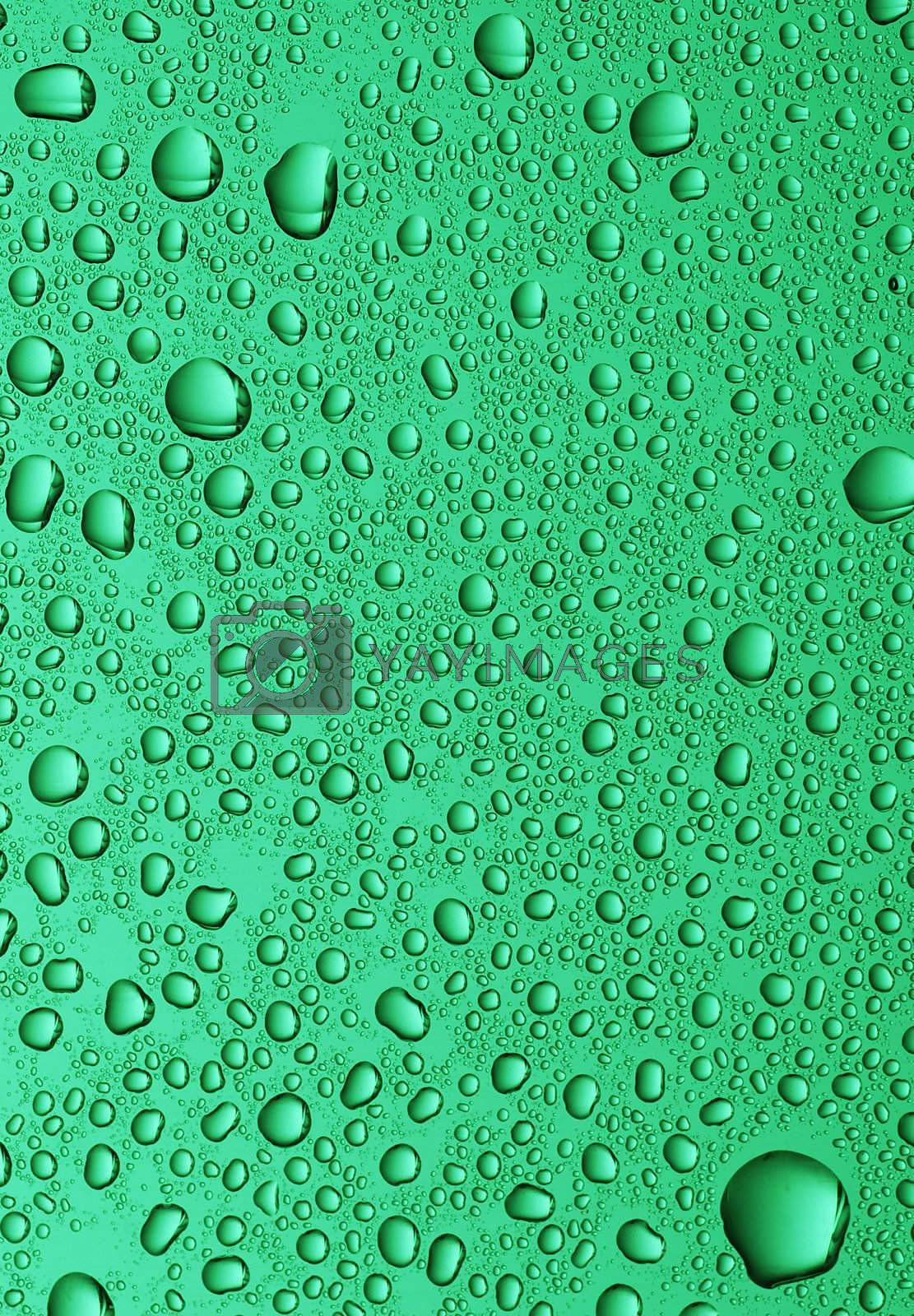 large water drops on green glass background