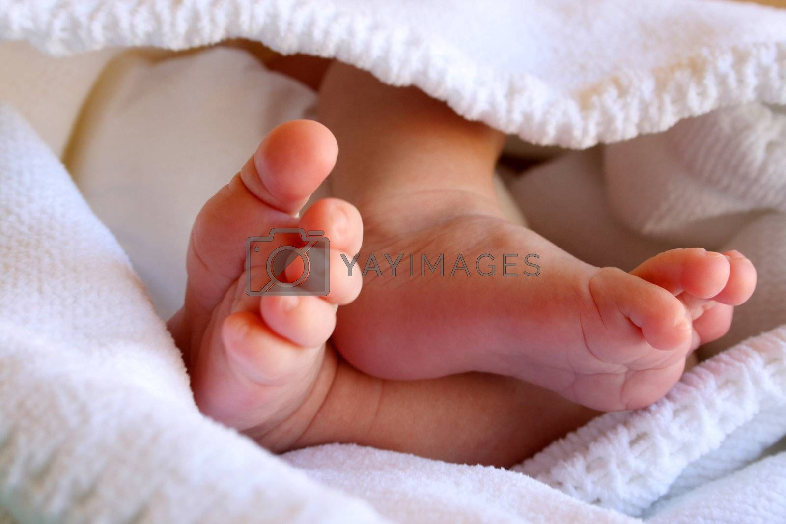 New Born Baby feet in a white blanket