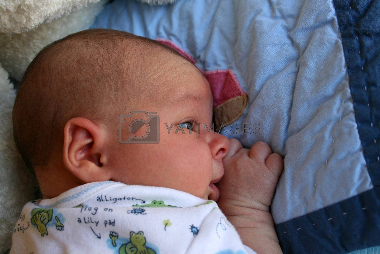 Week old baby boy on a blue blanket early in the morning