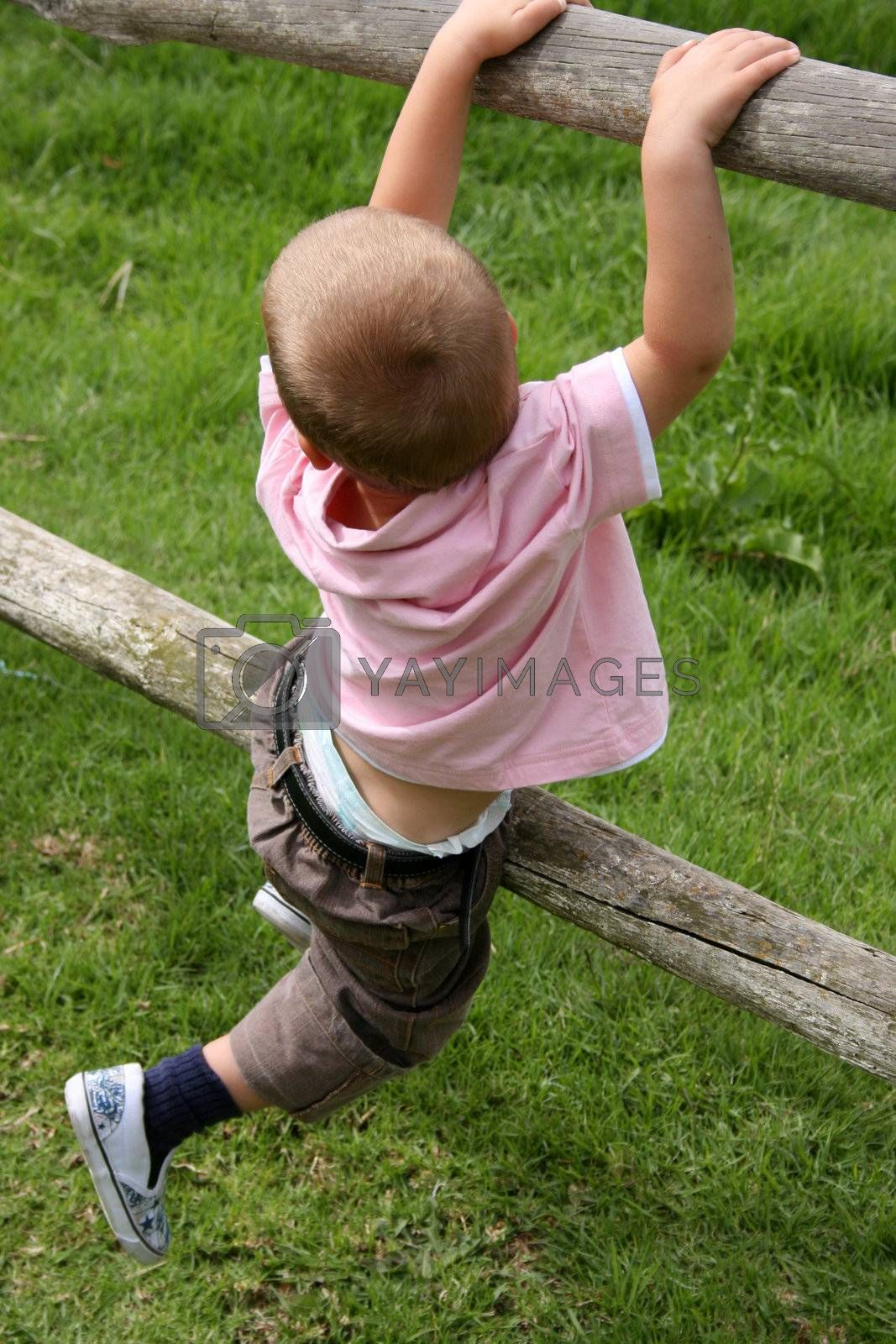 Young boy climbing on wooden fencing on a farm