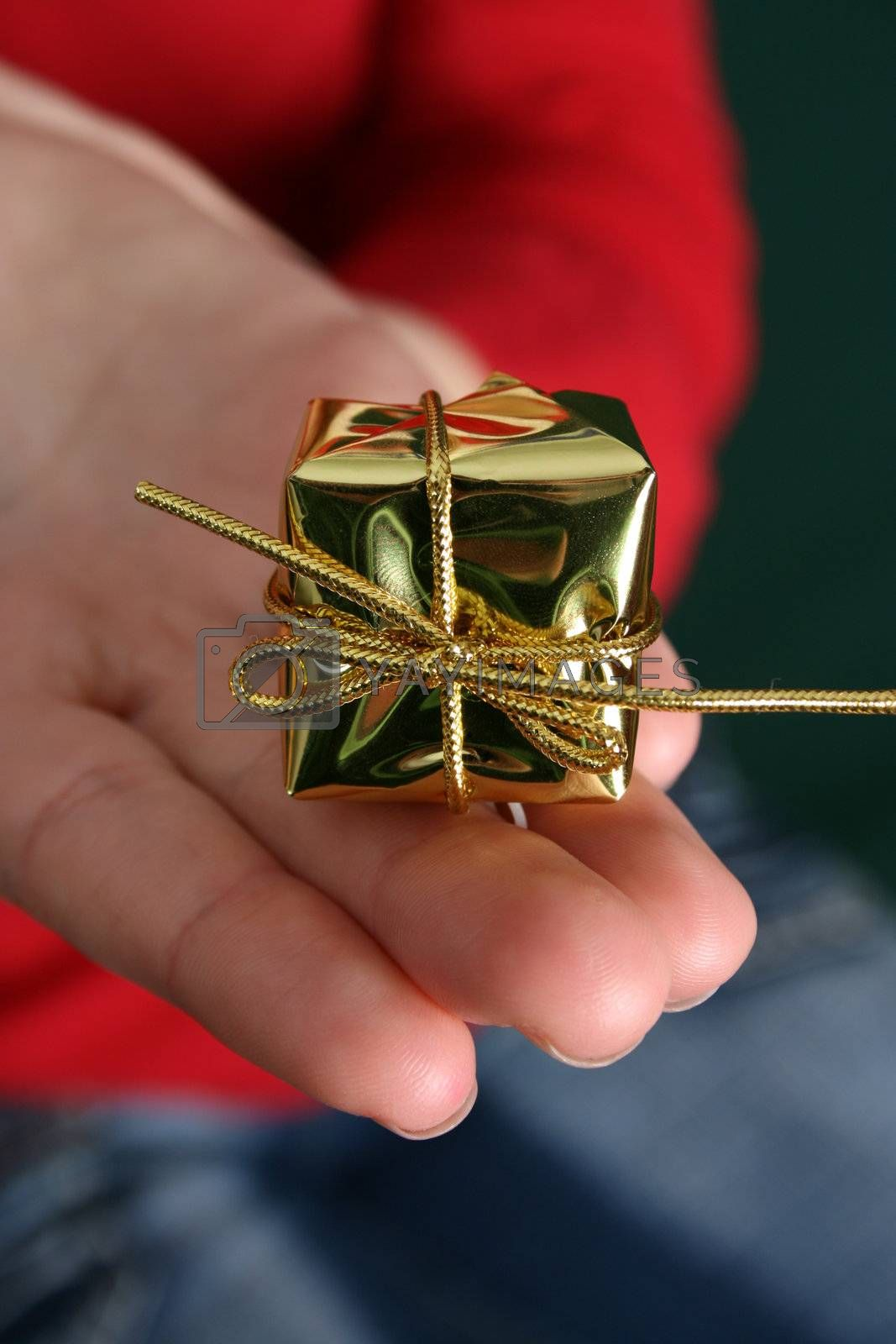 Small Christmas gift held by a caucasian female