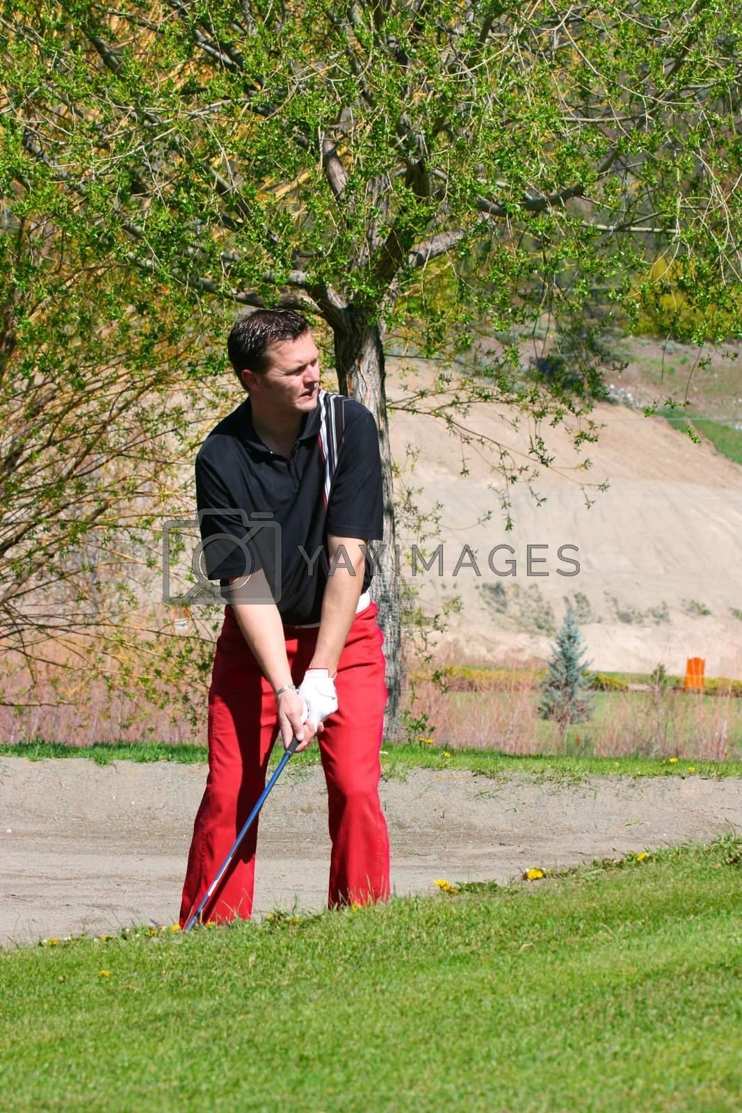 Young male golfer preparing to play a shot from the bunker