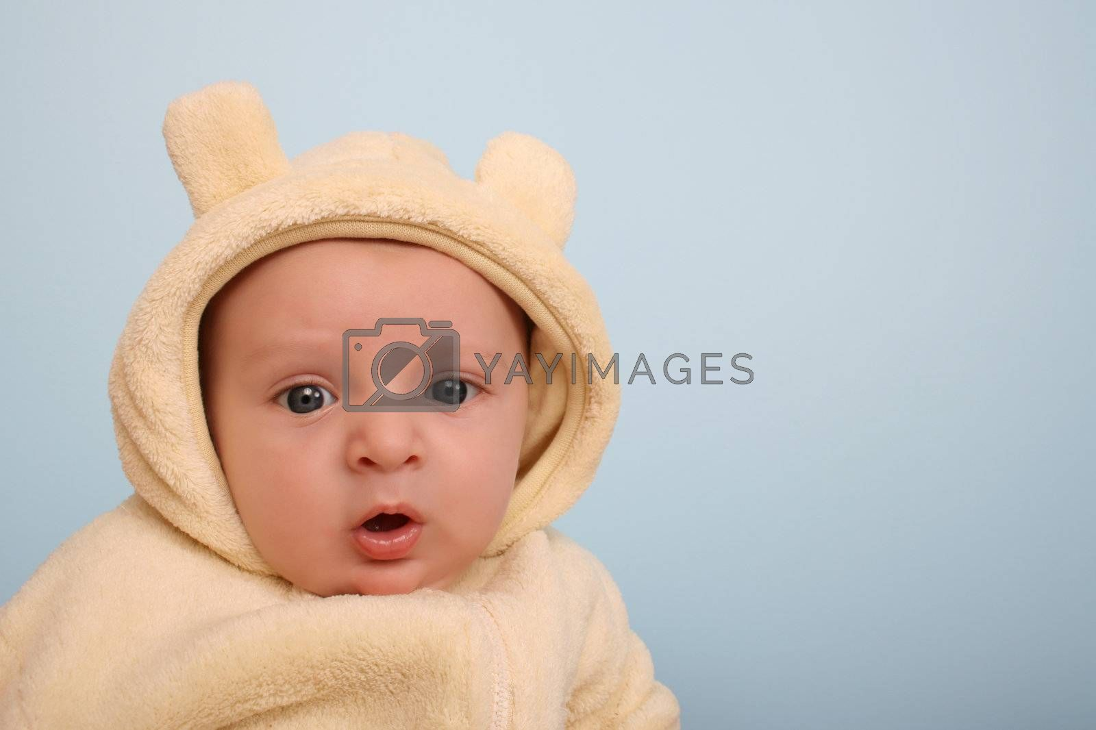Two month old baby boy wearing a soft animal suit
