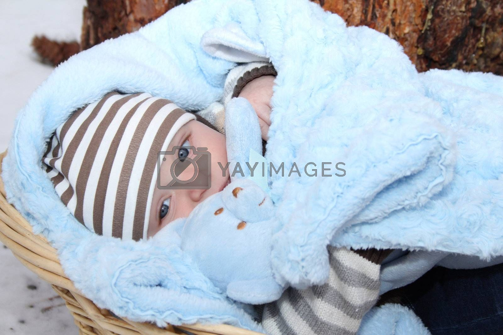 Cute baby boy lying outside in a basket