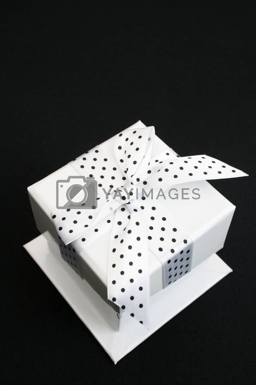 Small white box with a black and white spotted ribbon
