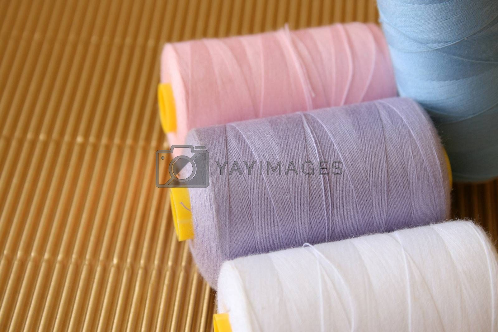 Cotton in various colors of white, purple, pink and blue