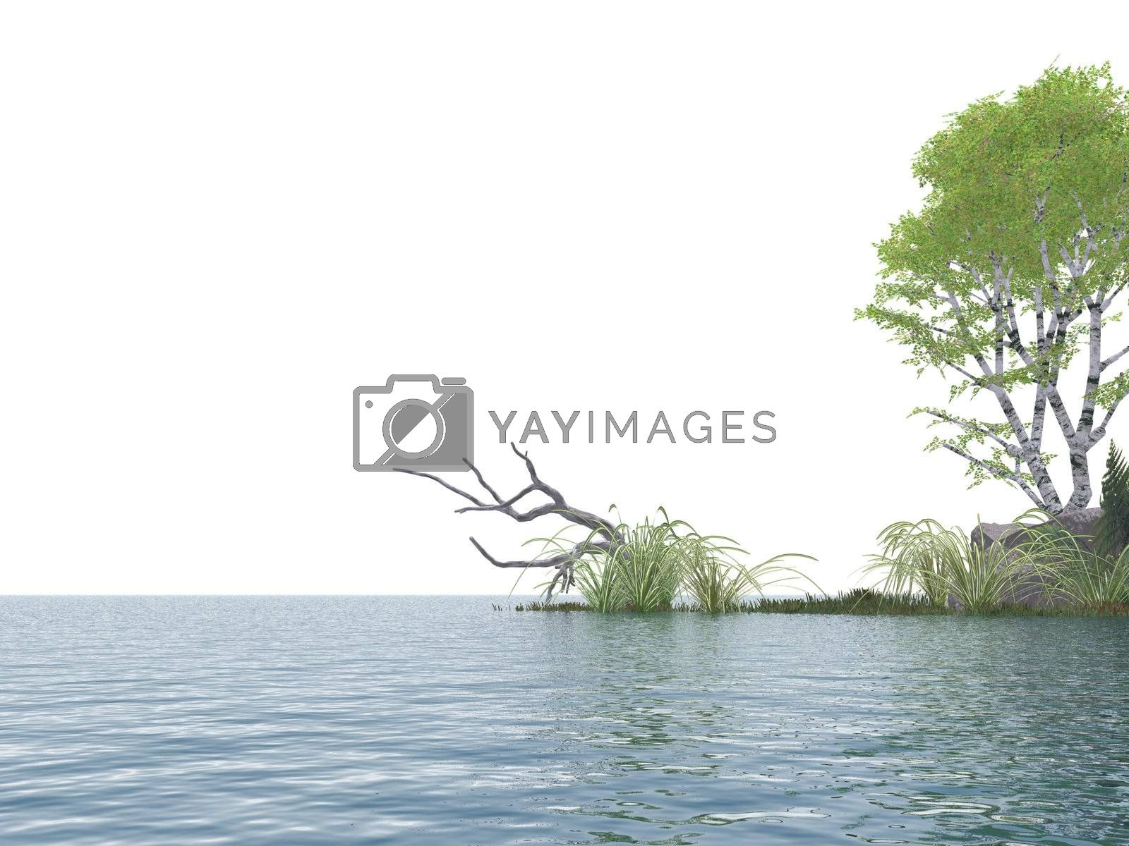 isolated water landscape with tree  - 3d illustration