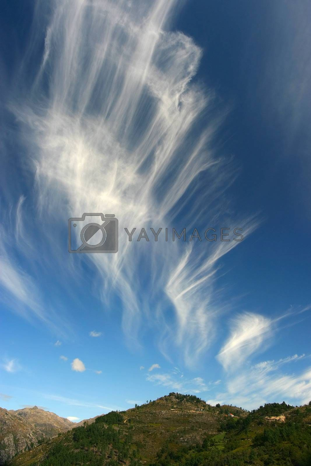 Royalty free image of Dreamy Sky by ajn