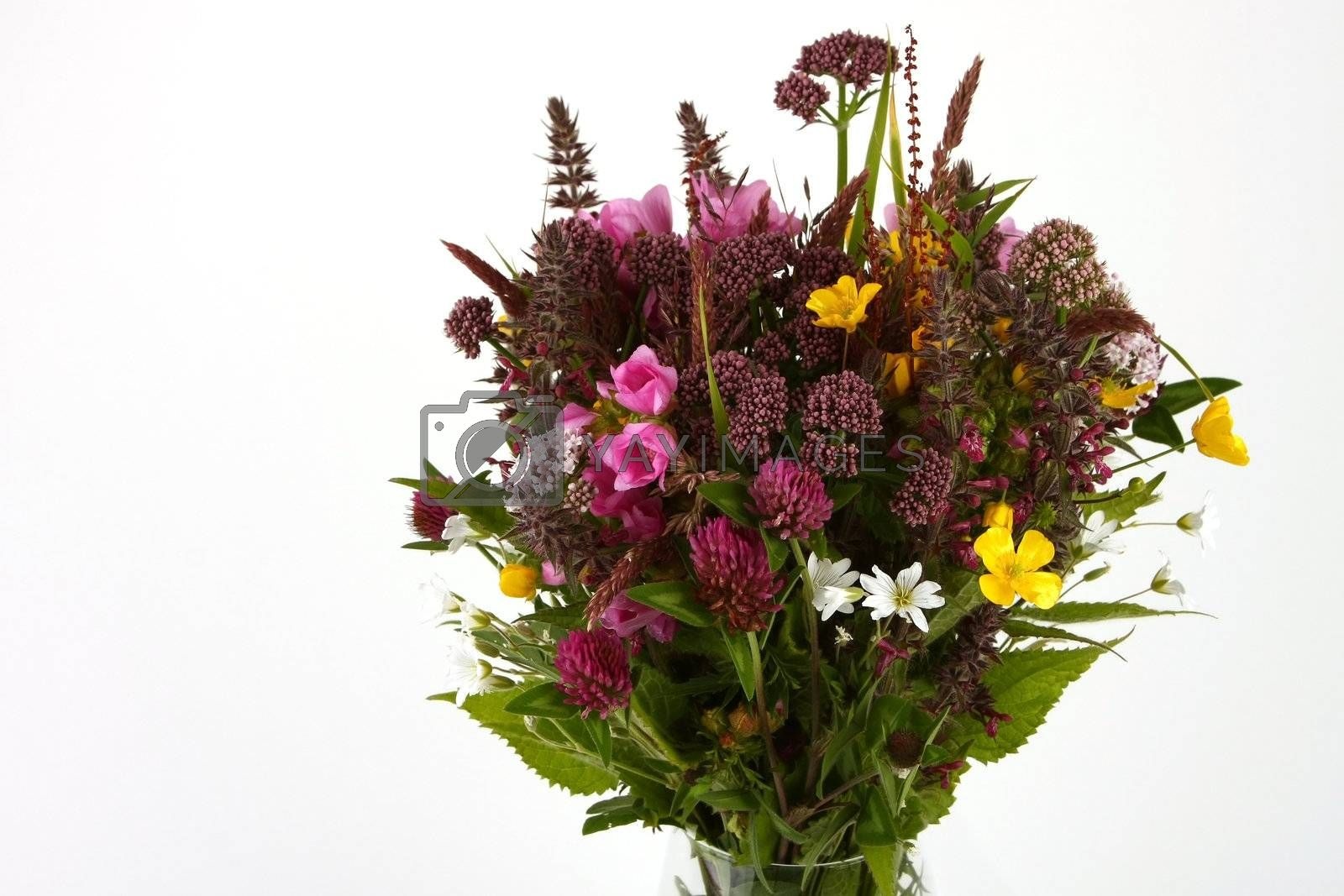 Royalty free image of Flower bouquet  by monicajohansen